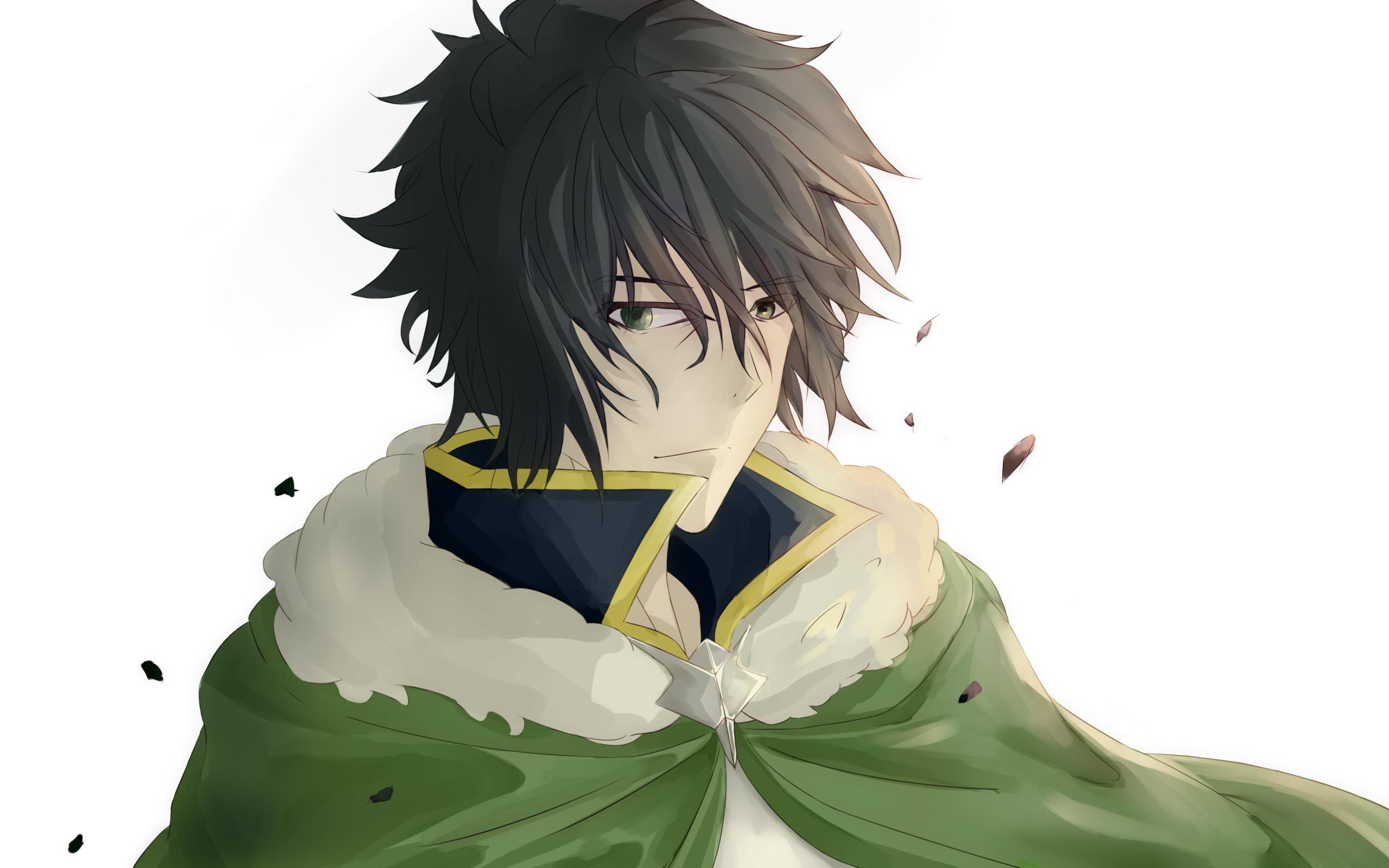 Wallpapers The Rising of the Shield Hero, Naofumi Iwatani Desktop