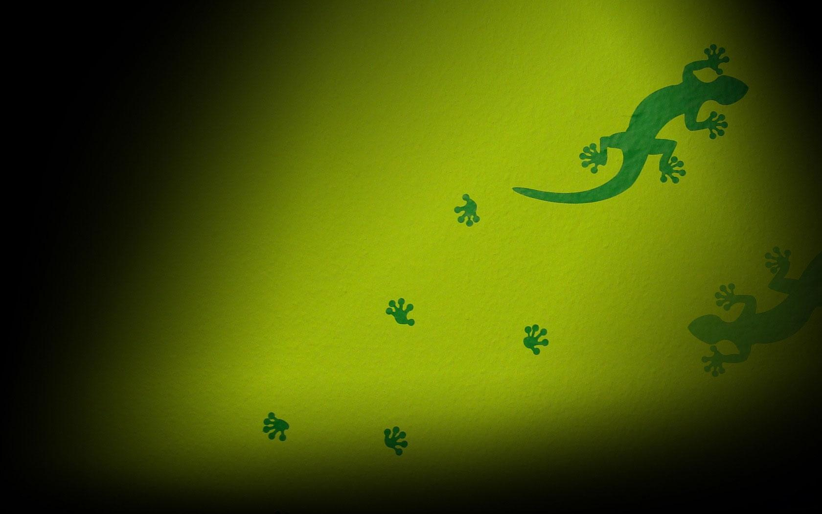 File: Gecko Wallpapers