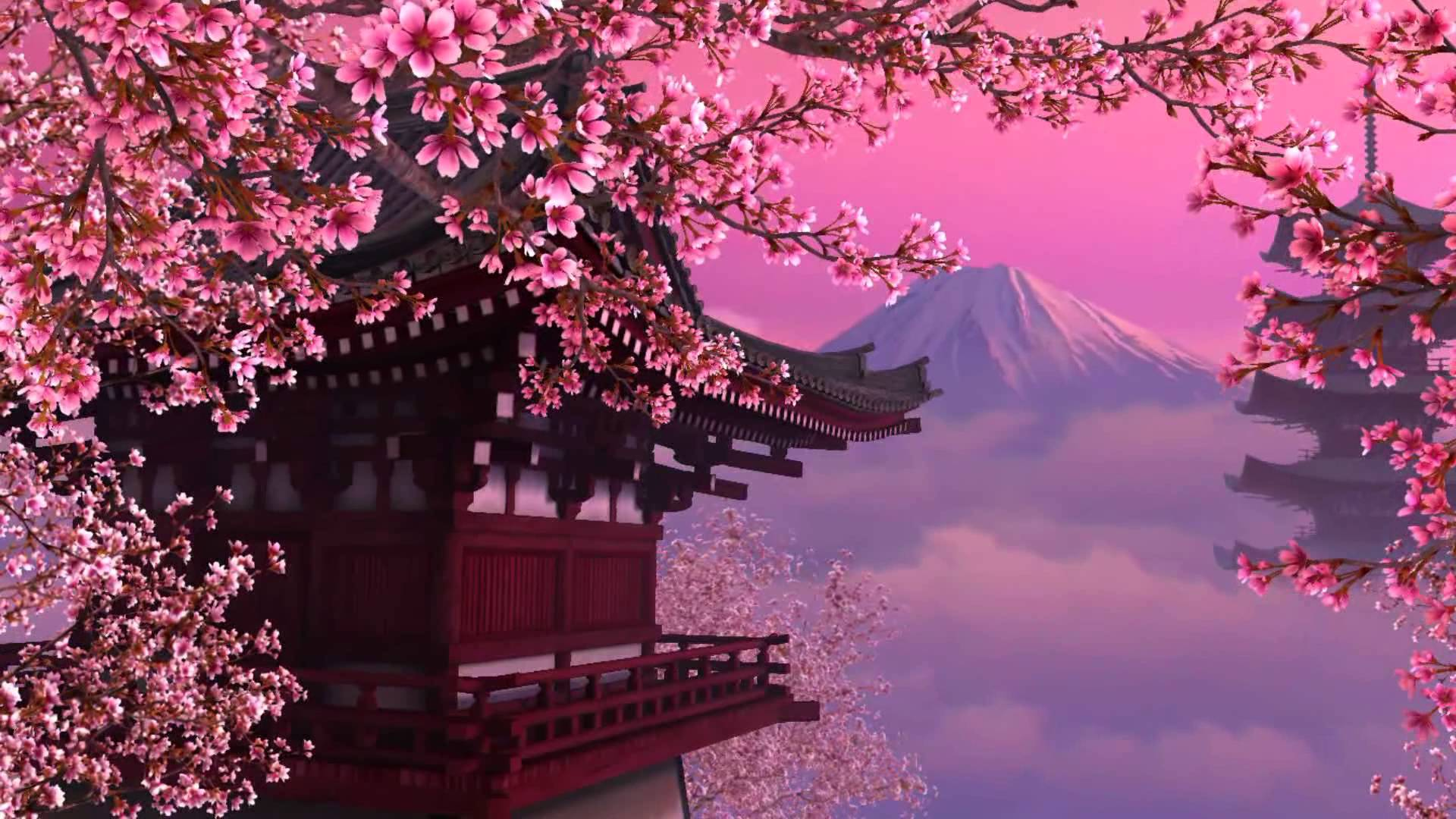 15397 wallpapers japan cherry blossoms