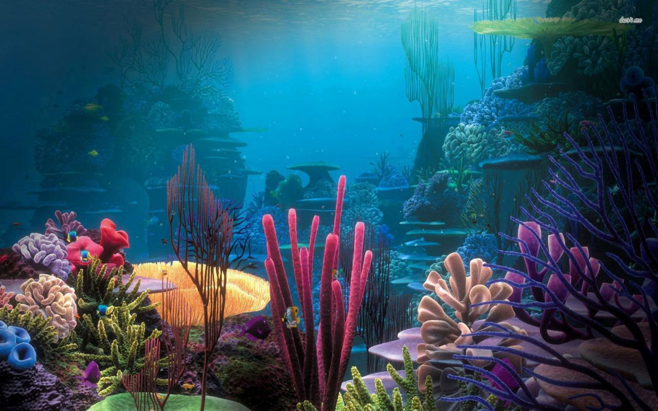 Aquariums image Aquarium Wallpapers HD wallpapers and backgrounds