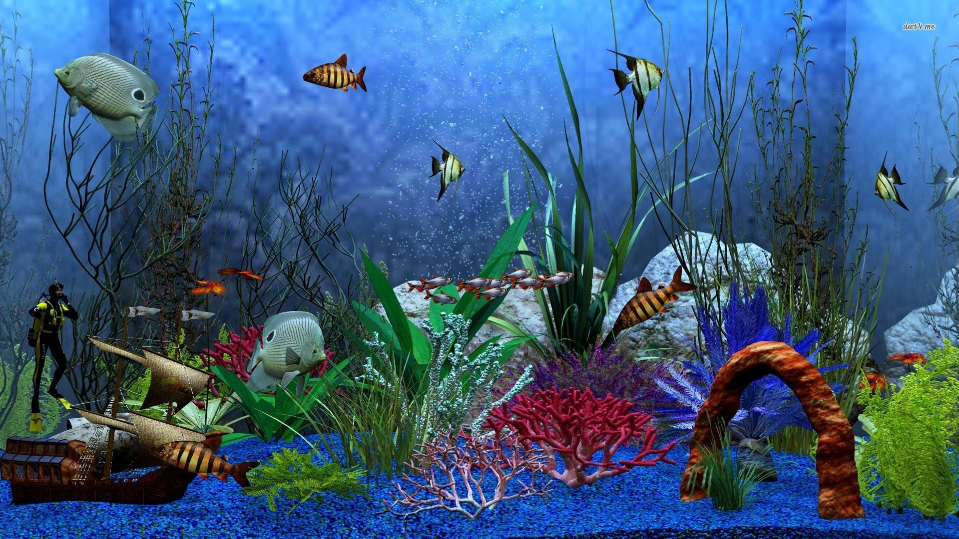 65+ Fish Tank Wallpapers