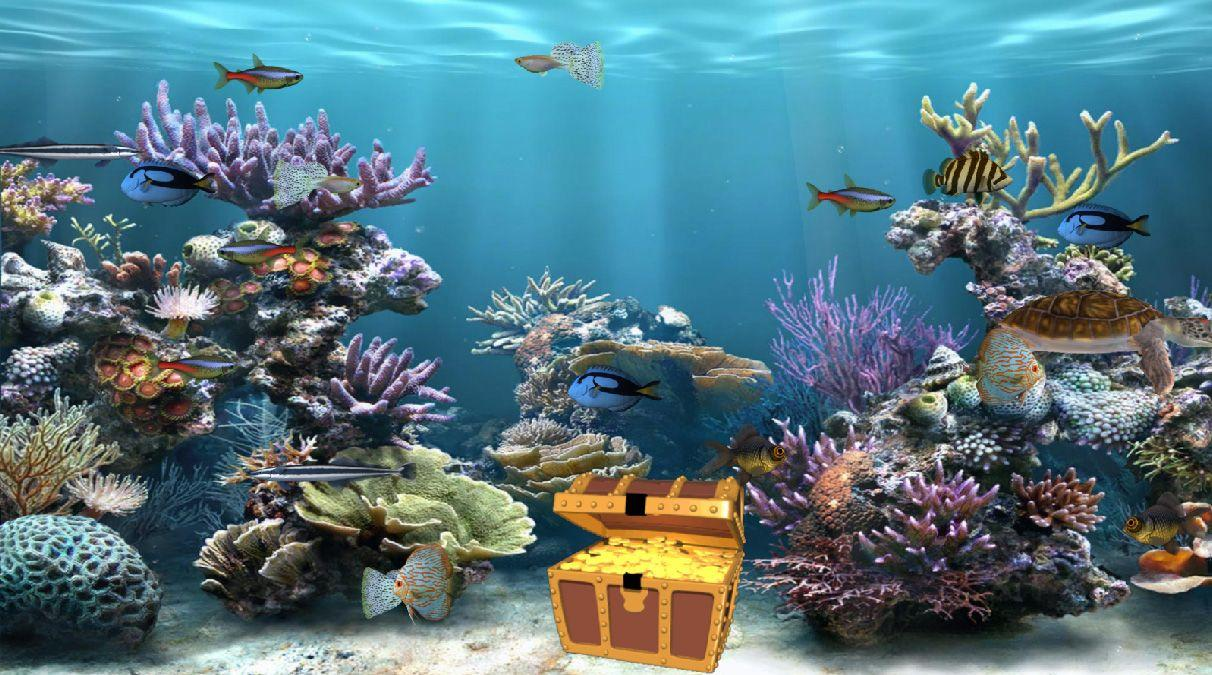 Aquarium Wallpapers 27