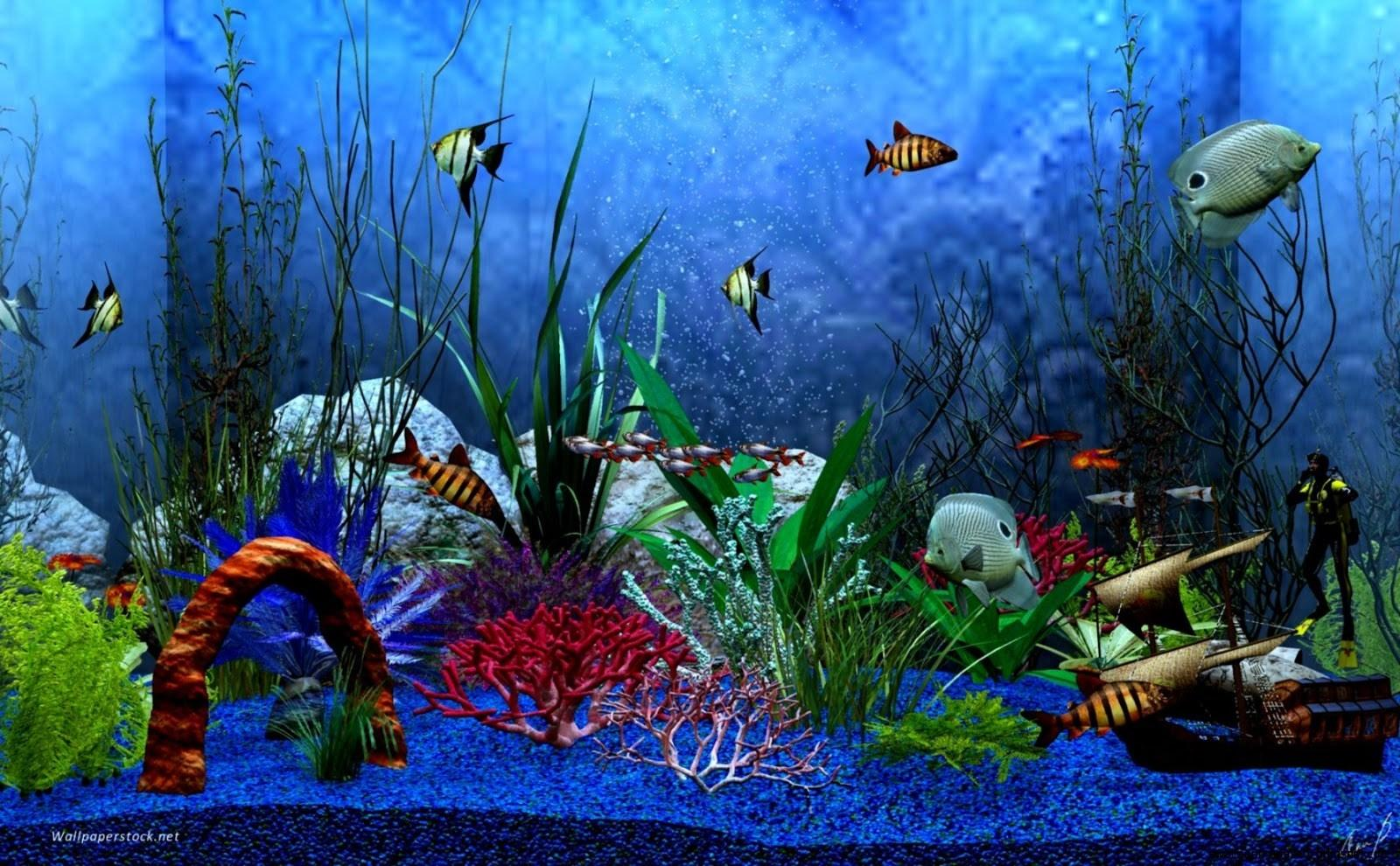 Lovely Free Download Animated Aquarium Desktop Wallpapers for Windows