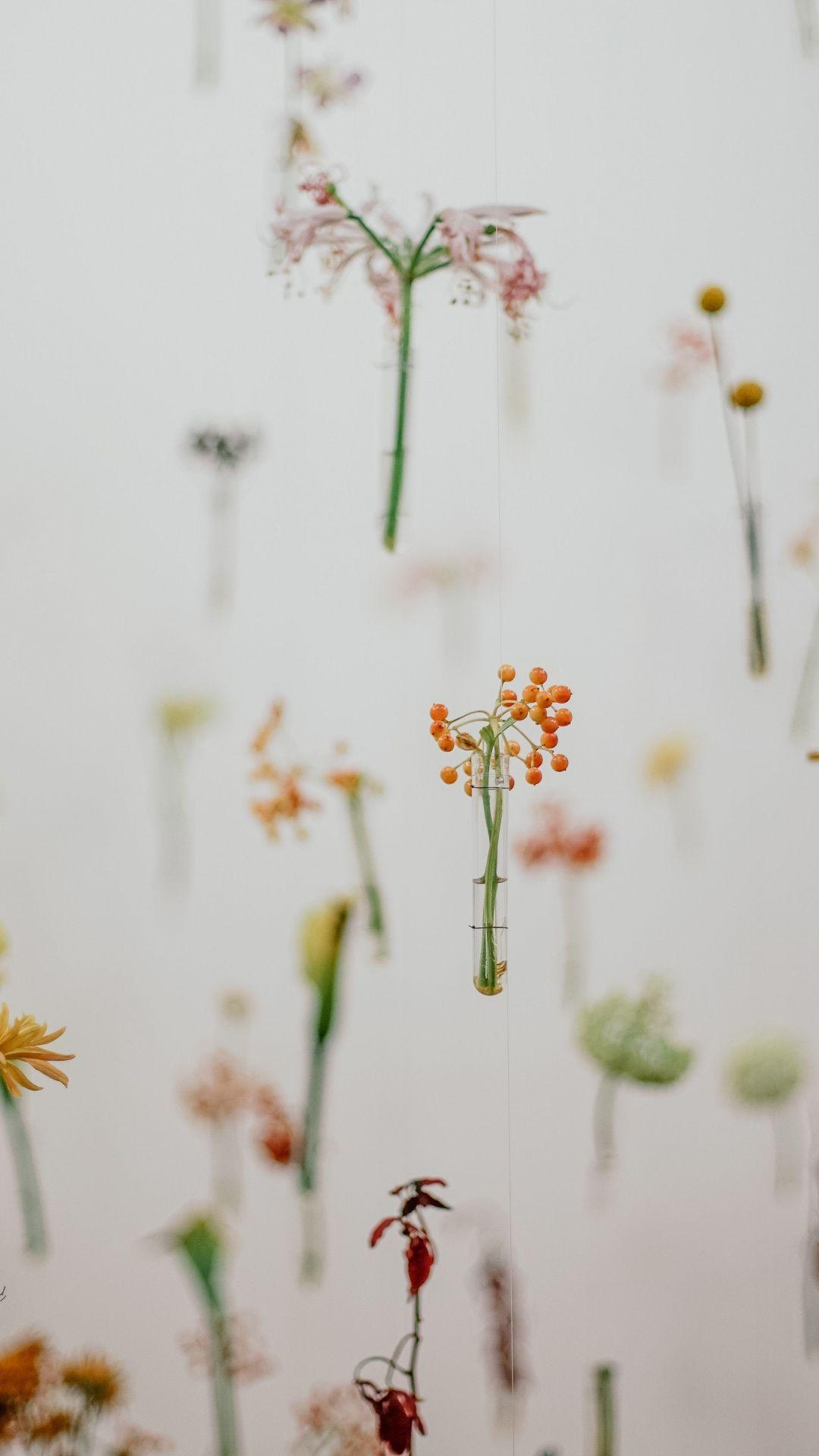 Minimal, hanging, flowers, 1080x1920 wallpapers