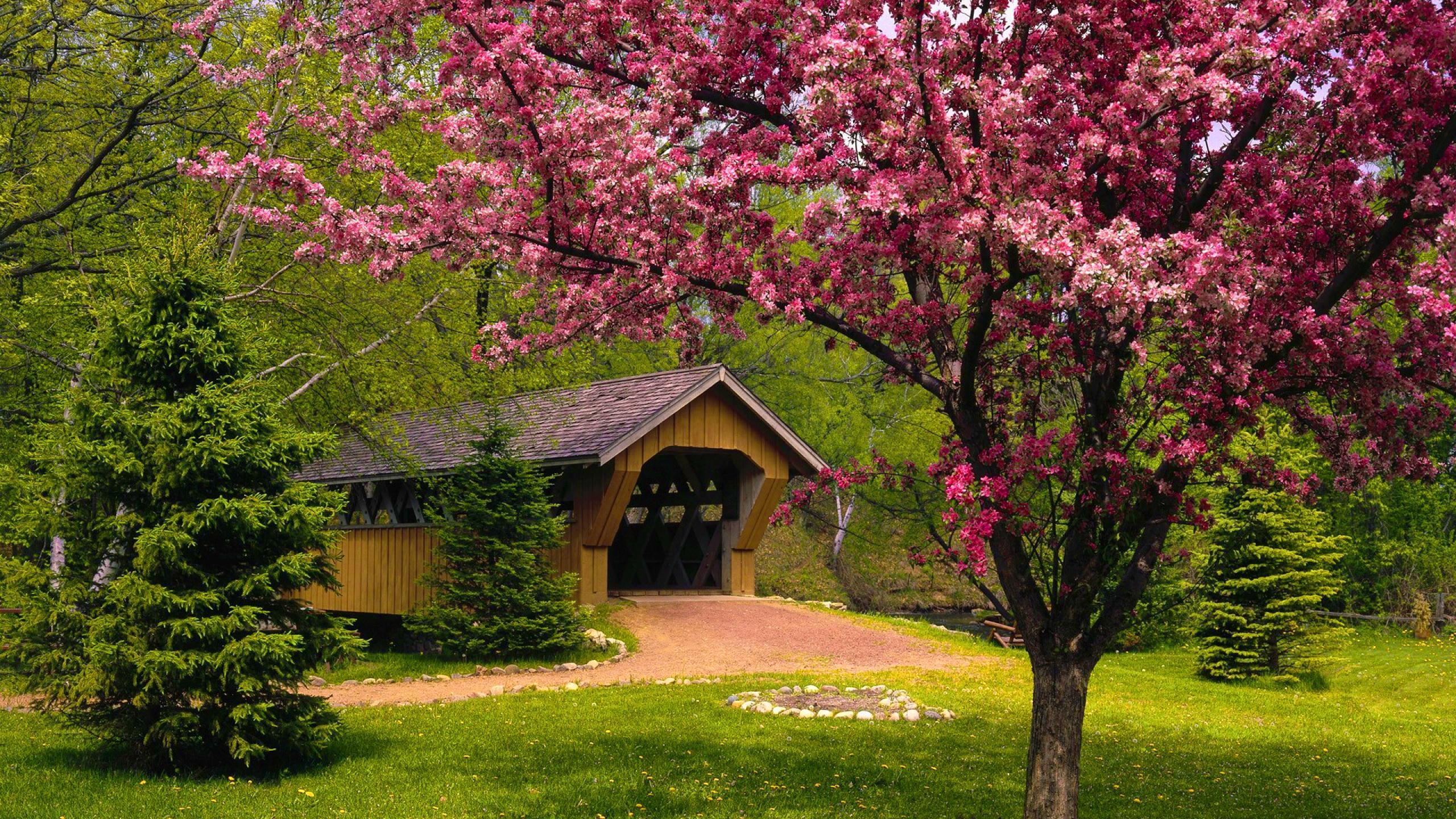 Spring Season Wallpaper Backgrounds - Best Wallpaper Foto In