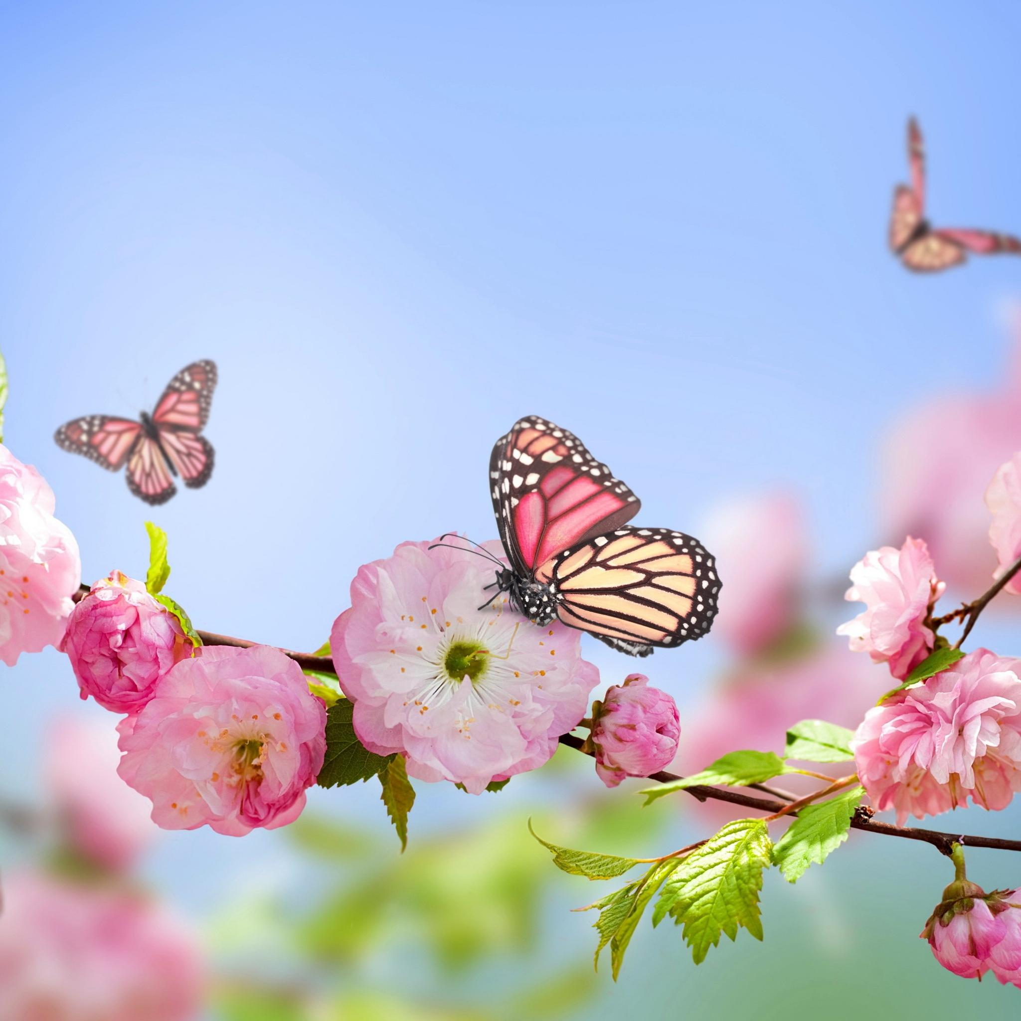 Spring Months Wallpapers - Wallpaper Cave