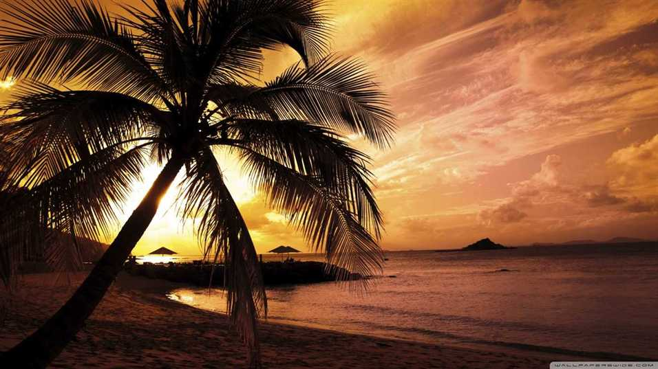 Download Sunset Beach Wallpapers 70+ pictuers)