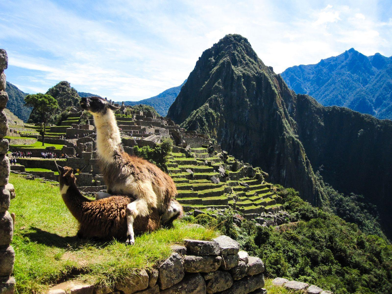 I was browsing the web for Machu Picchu wallpapers when suddenly ...
