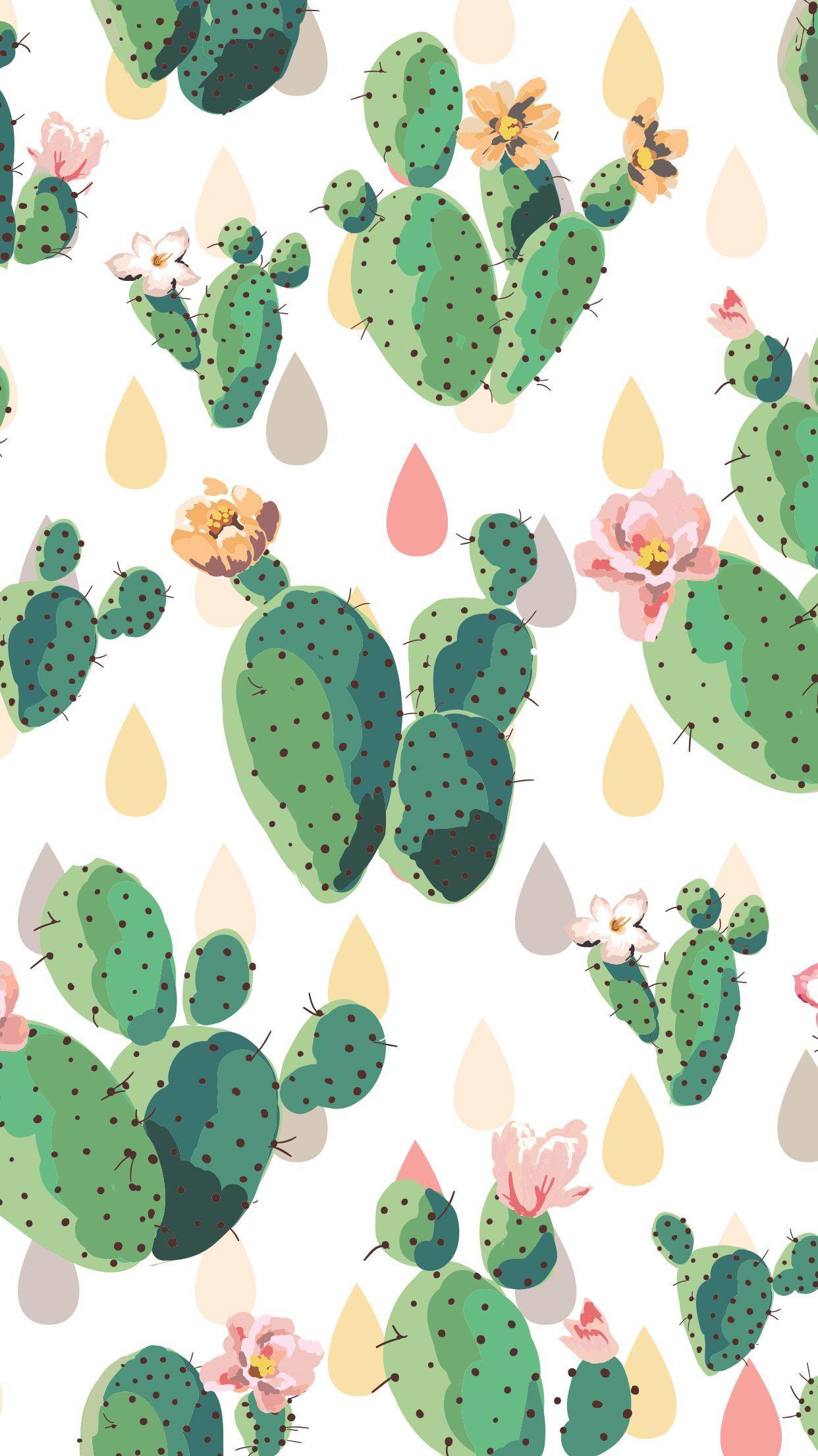 Aesthetic Cactus Iphone Wallpaper Novocom Top