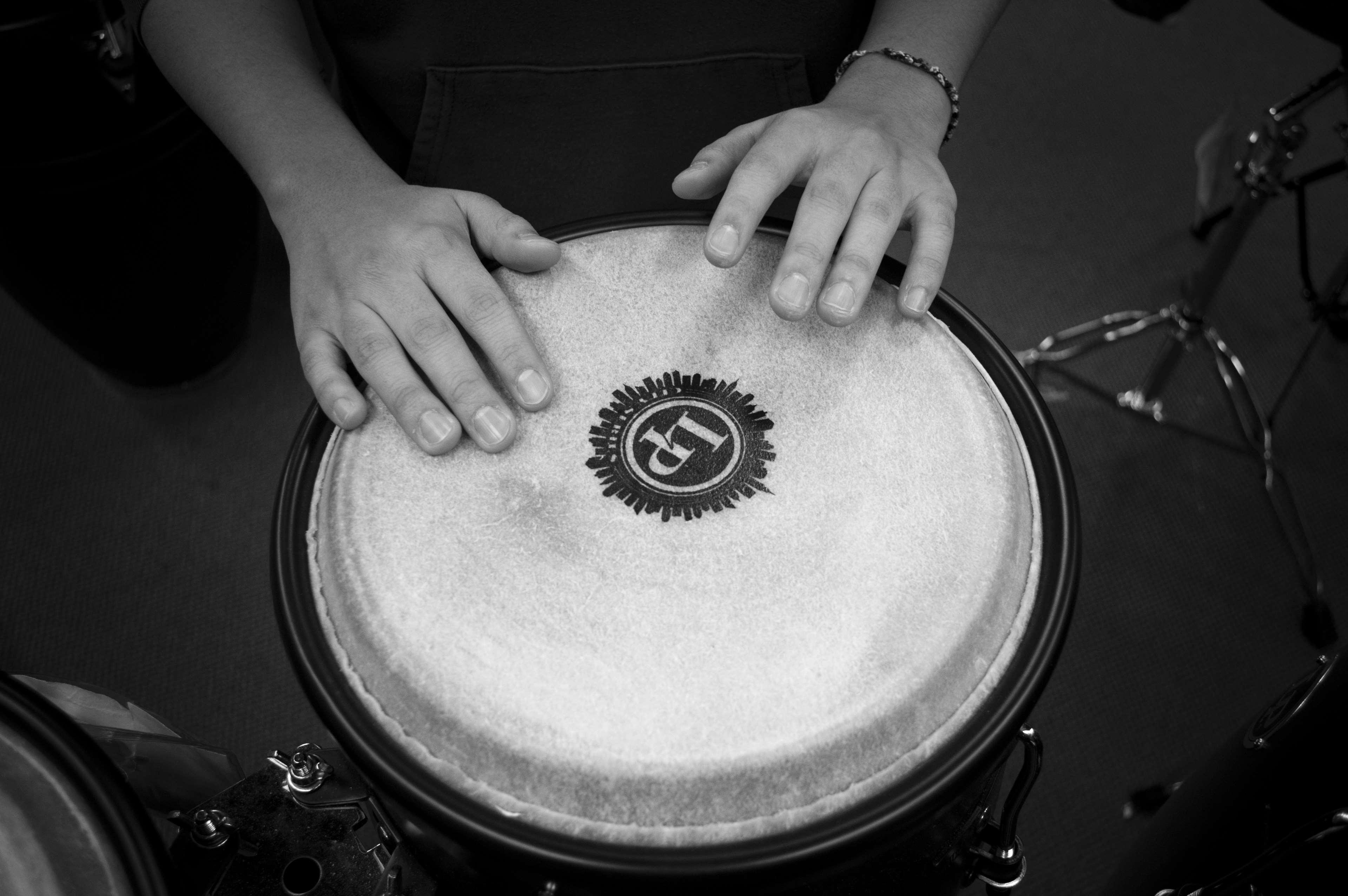 band, beat, black and white, bongo drum, drum, drummer, hands, loud