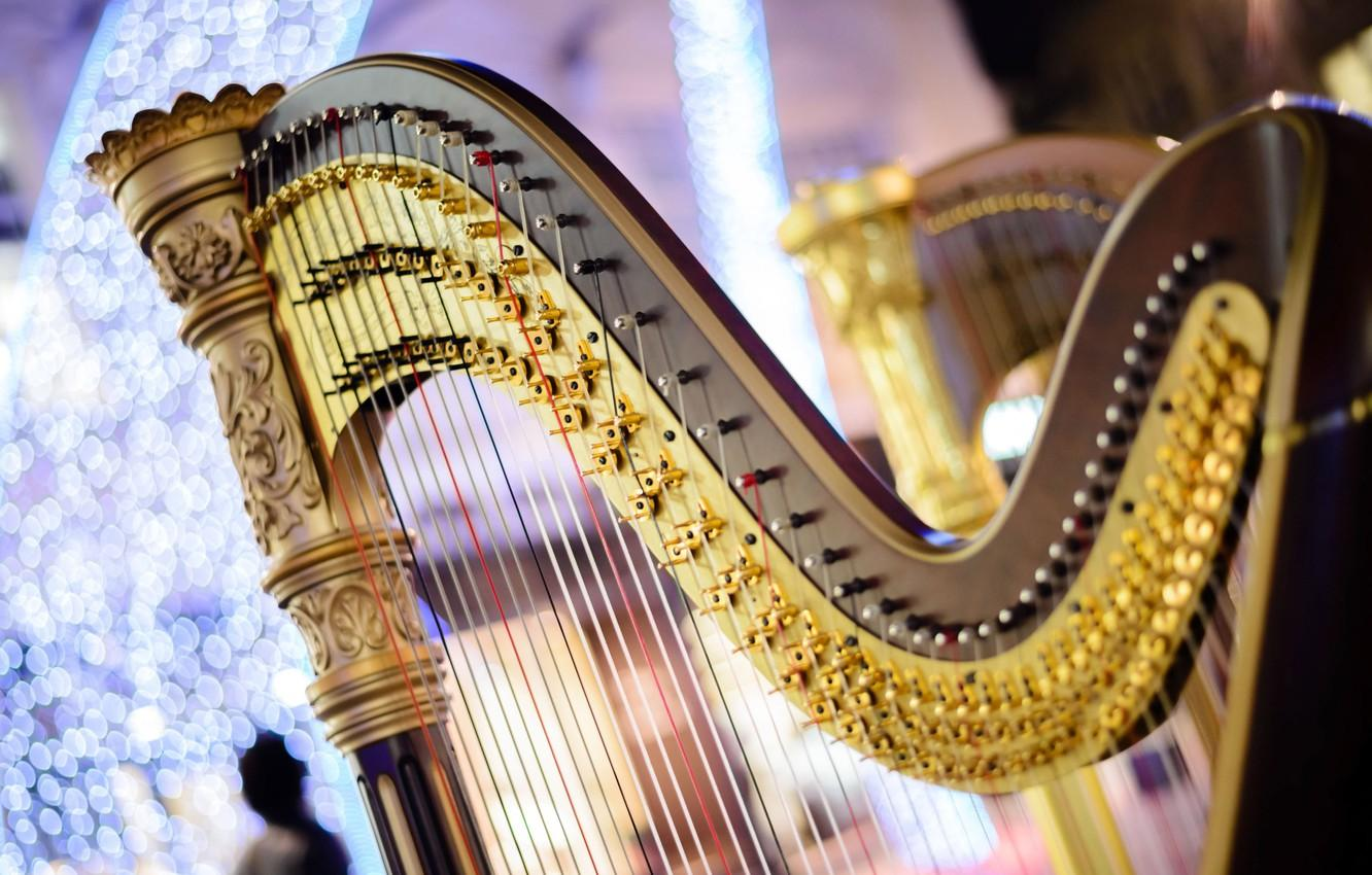 Wallpapers strings, music, blur, sound, harp, concert, tool, music