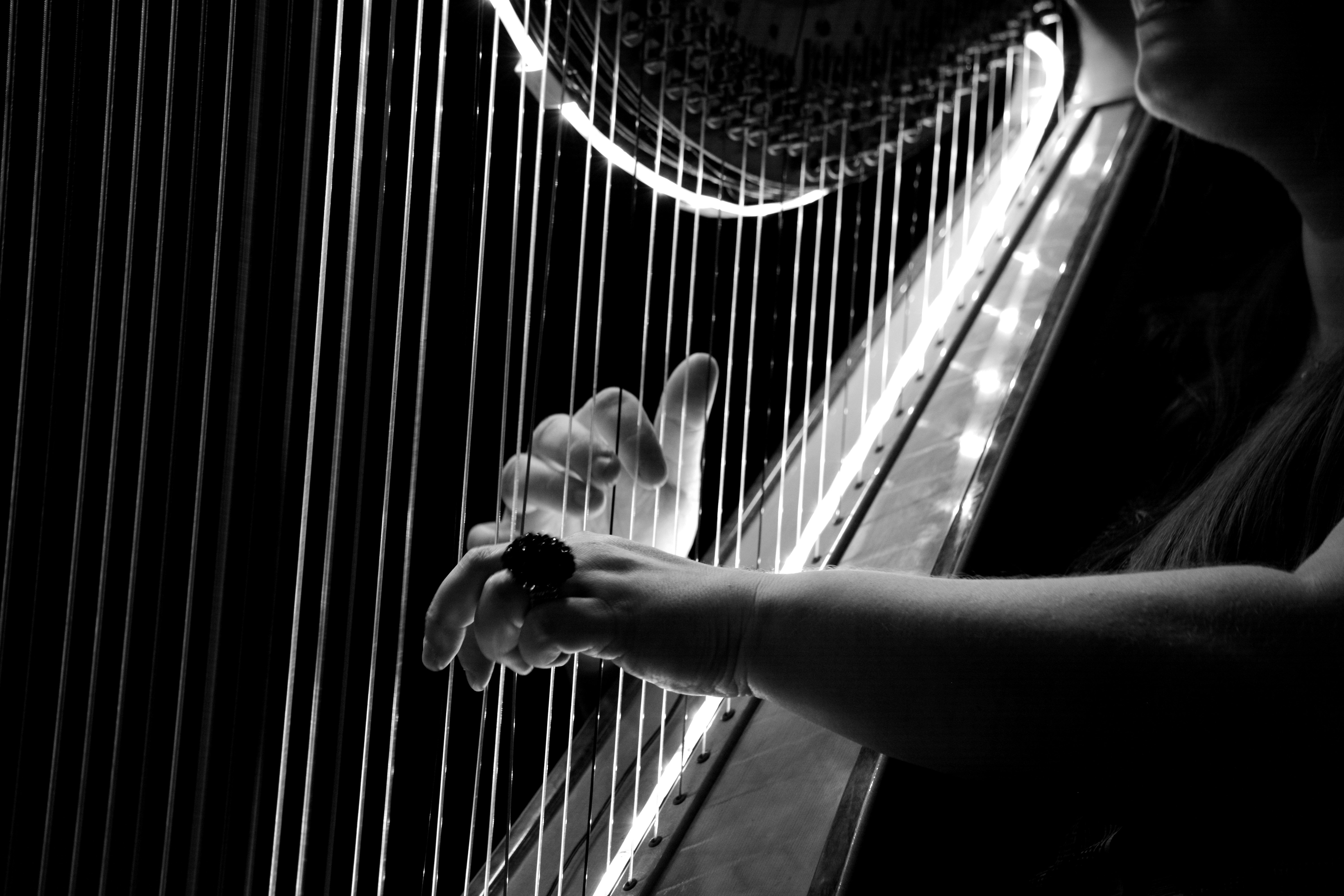 grayscale photo of harp free image