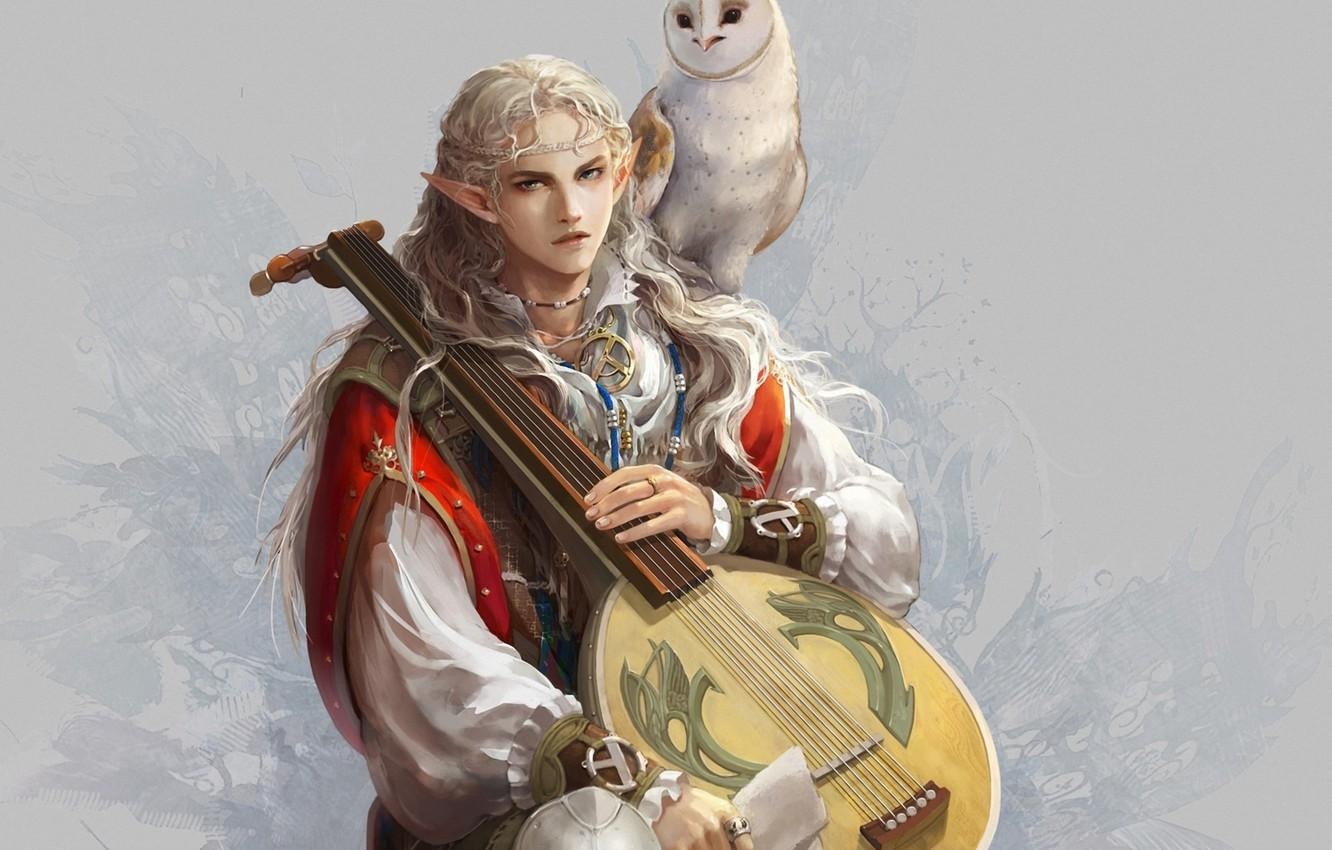 Wallpapers owl, bird, elf, art, guy, ears, bard, lute image for