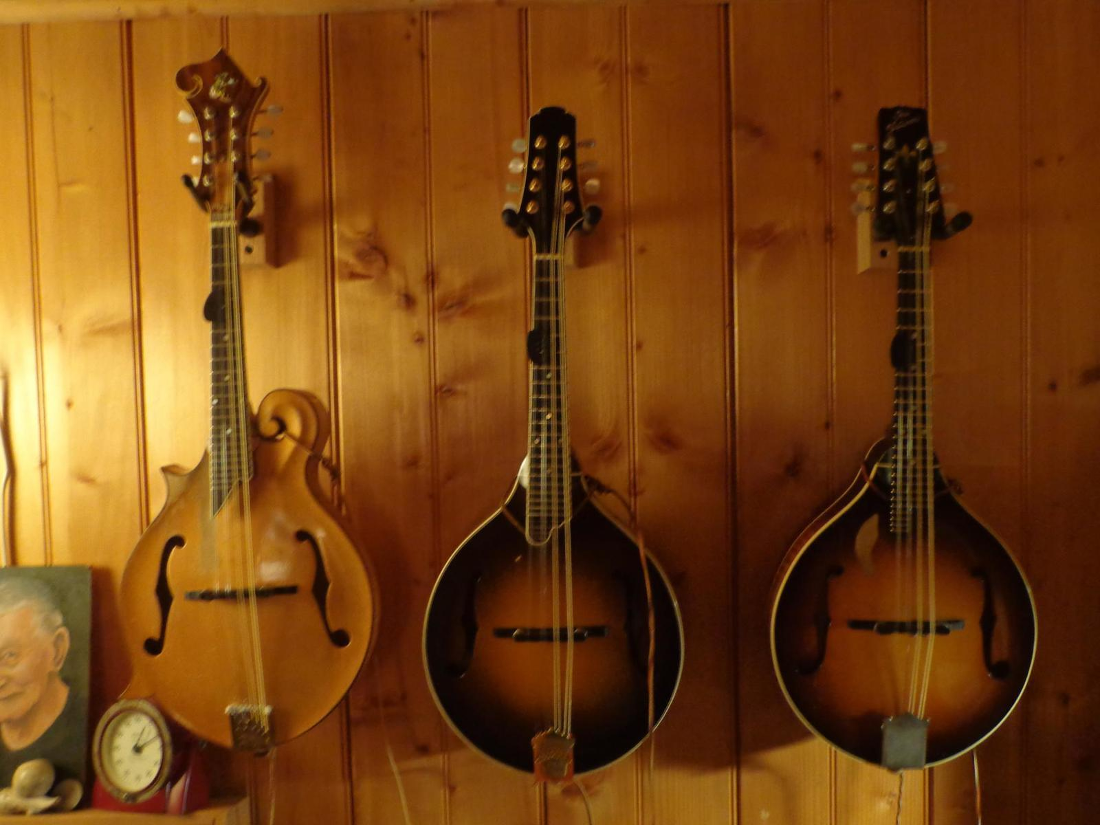 Mandolin Wallpapers