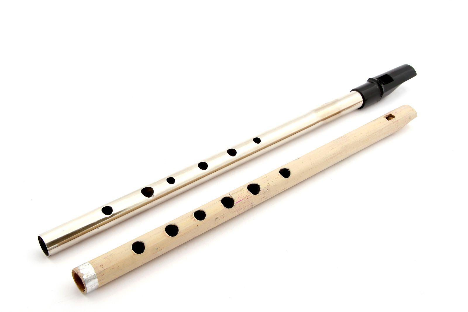 Tin Whistle Page: History of the Irish Penny Whistle