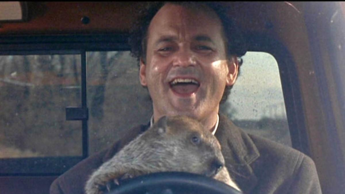 Bill Murray Reenacts 'Groundhog Day' By Going To See 'Groundhog Day