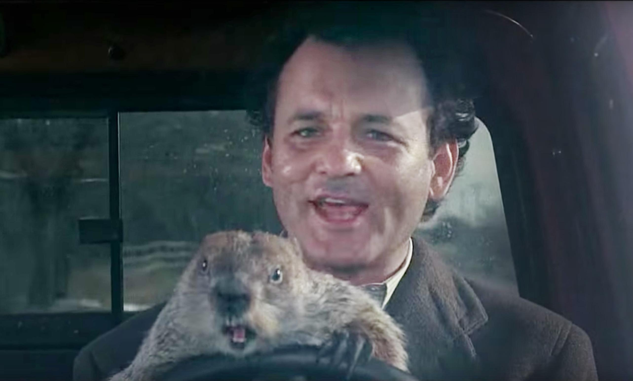 Groundhog Day Wallpapers High Quality
