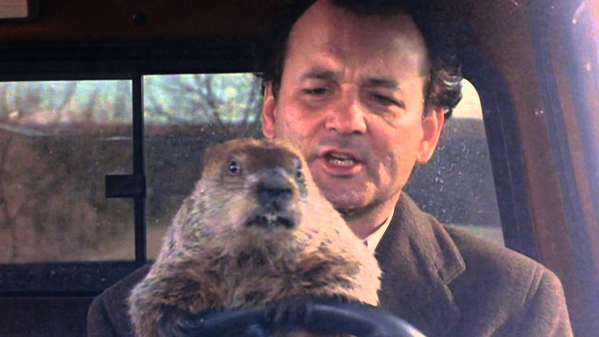 Video Breaks Down How Long Phil Spent Stuck In GROUNDHOG DAY