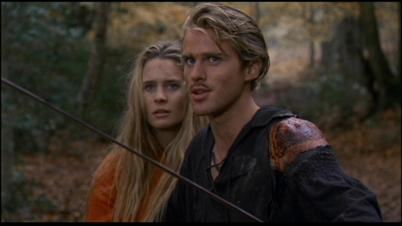 The Princess Bride image The Princess Bride HD wallpapers and