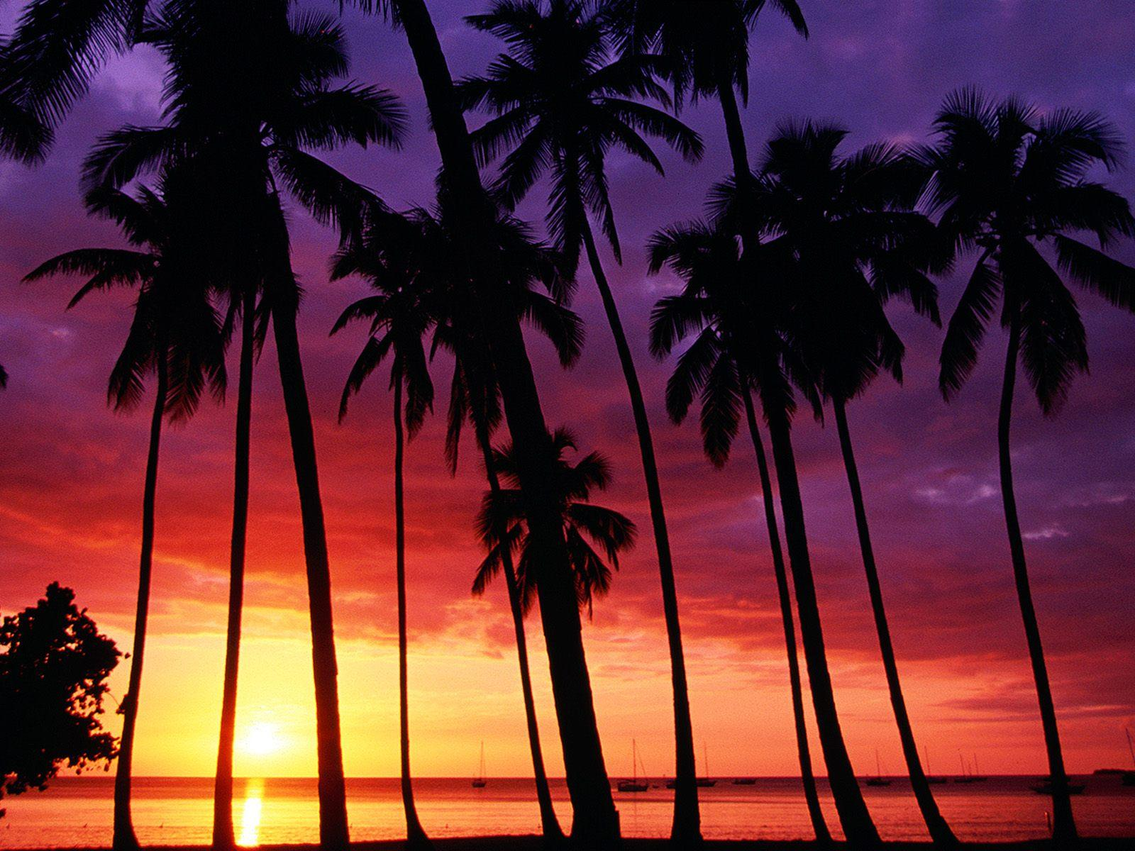 Cool Sunset Beach Wallpapers Wallpapers