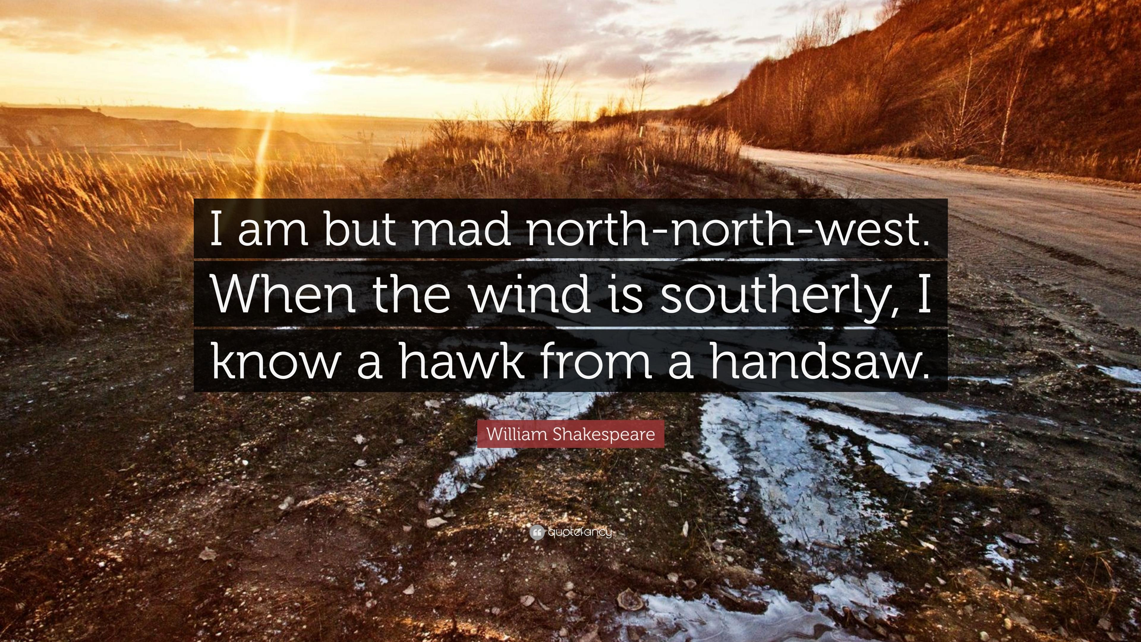 "William Shakespeare Quote: ""I am but mad north"