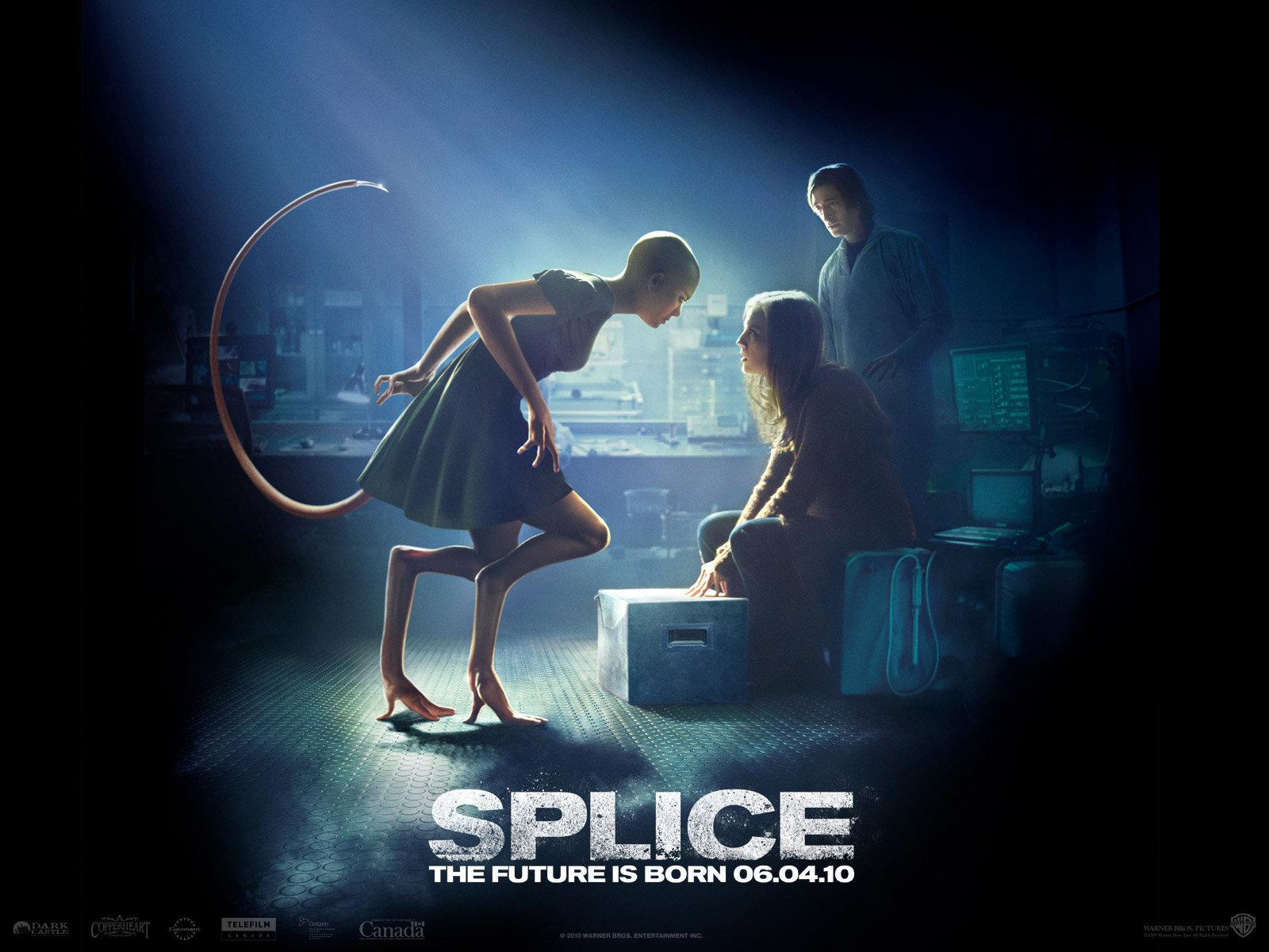 Splice Wallpaper - #10022100 (1280x1024) | Desktop Download page ...