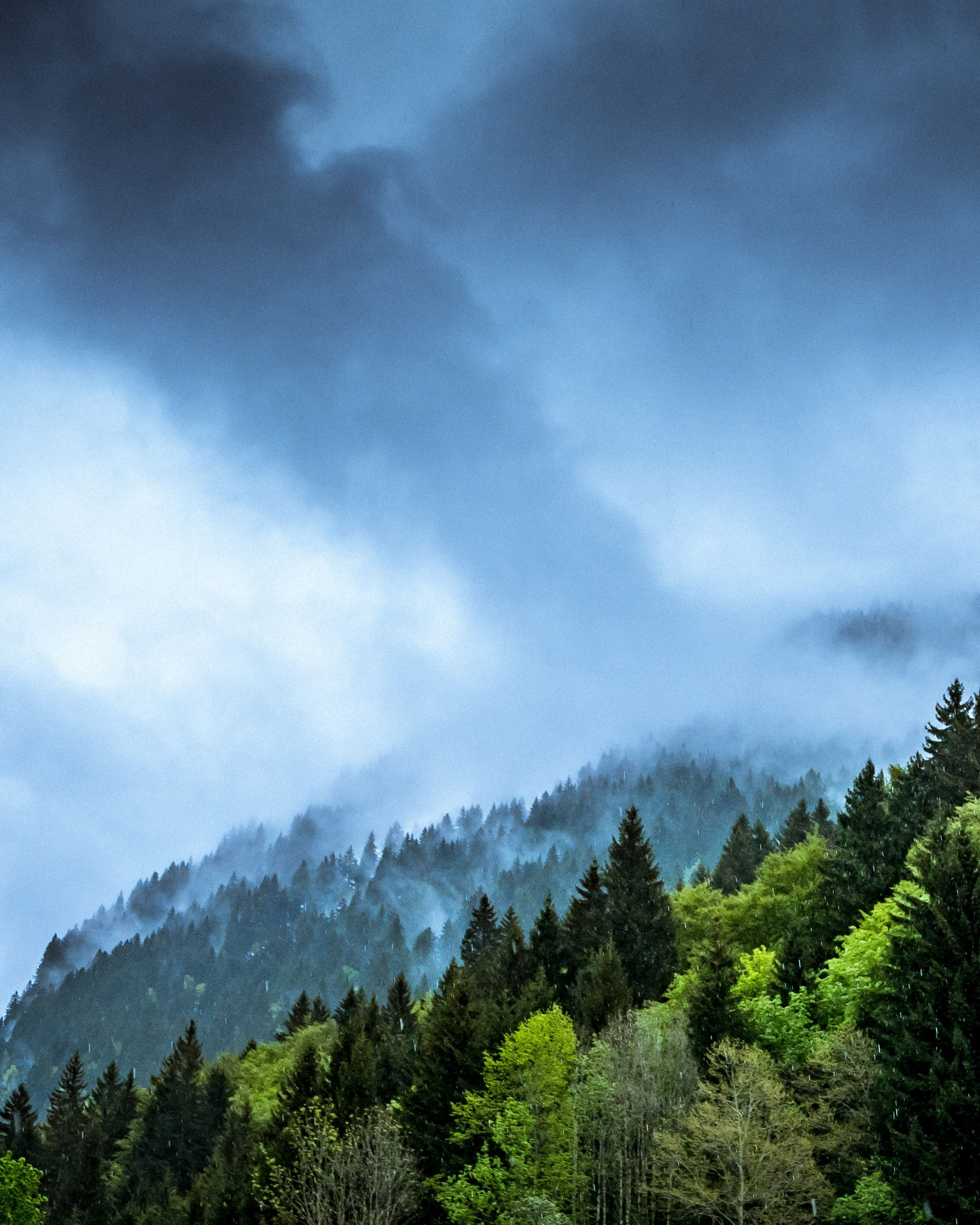 Nature #tree, mountain, cloud, fog, mist #wallpapers hd 4k ...
