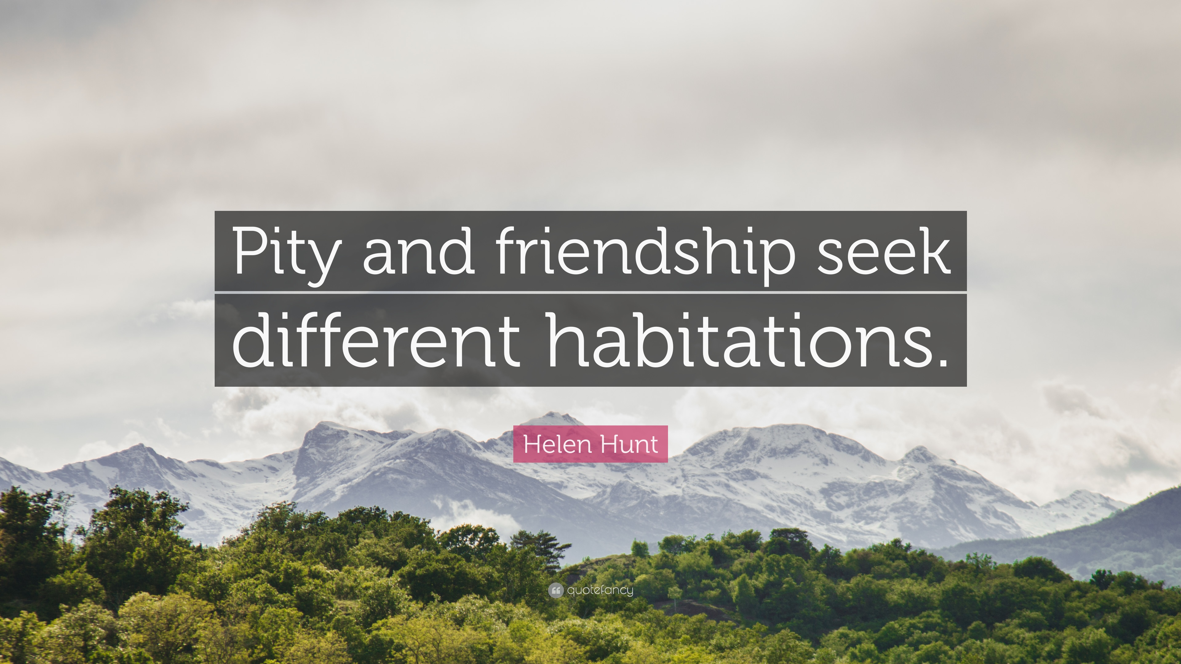 "Helen Hunt Quote: ""Pity and friendship seek different habitations"