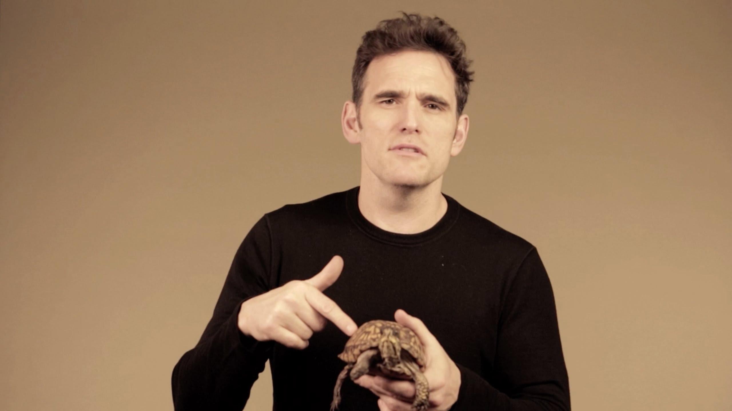 Pictures of Matt Dillon