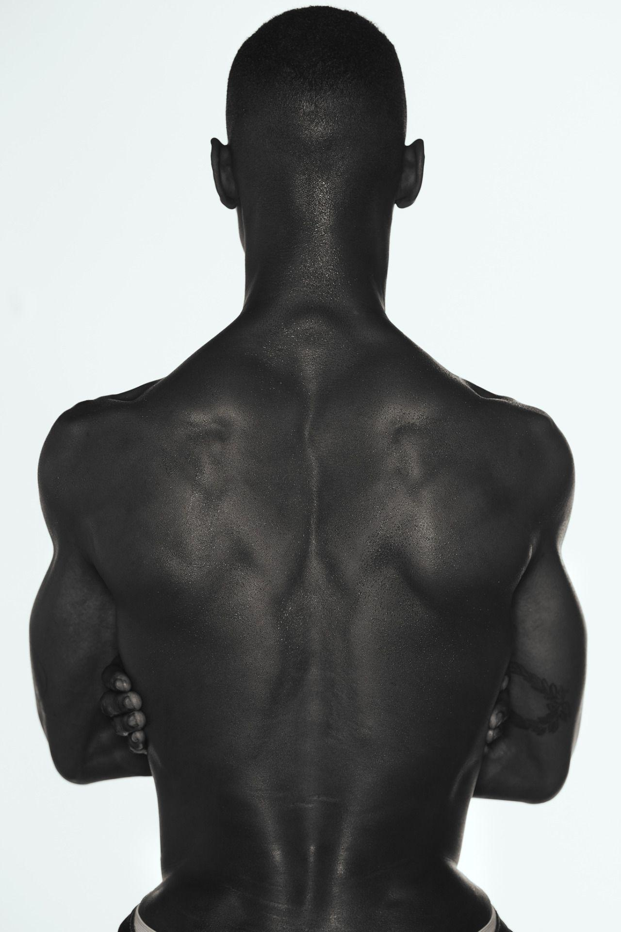 Adonis Bosso by Kristiina Wilson