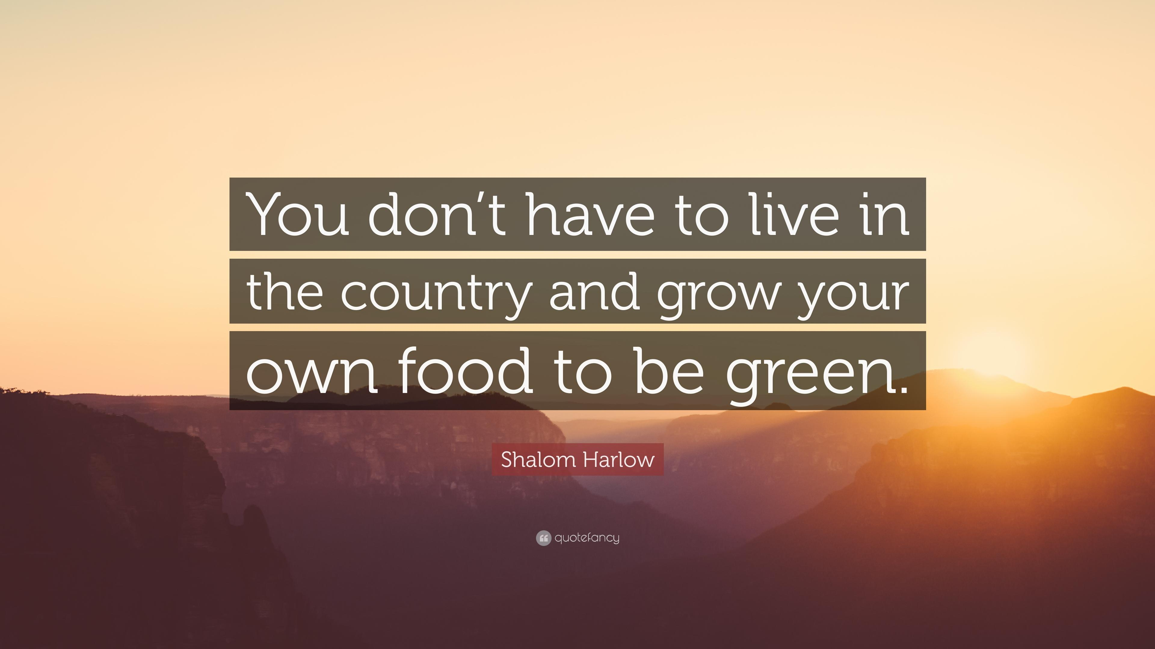 "Shalom Harlow Quote: ""You don't have to live in the country and grow ..."