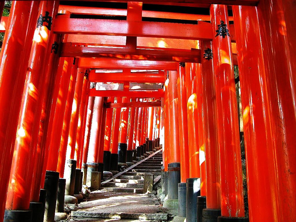 Torii Tag wallpapers: Shrine Gate Temple Japanese Forest Japan Torii