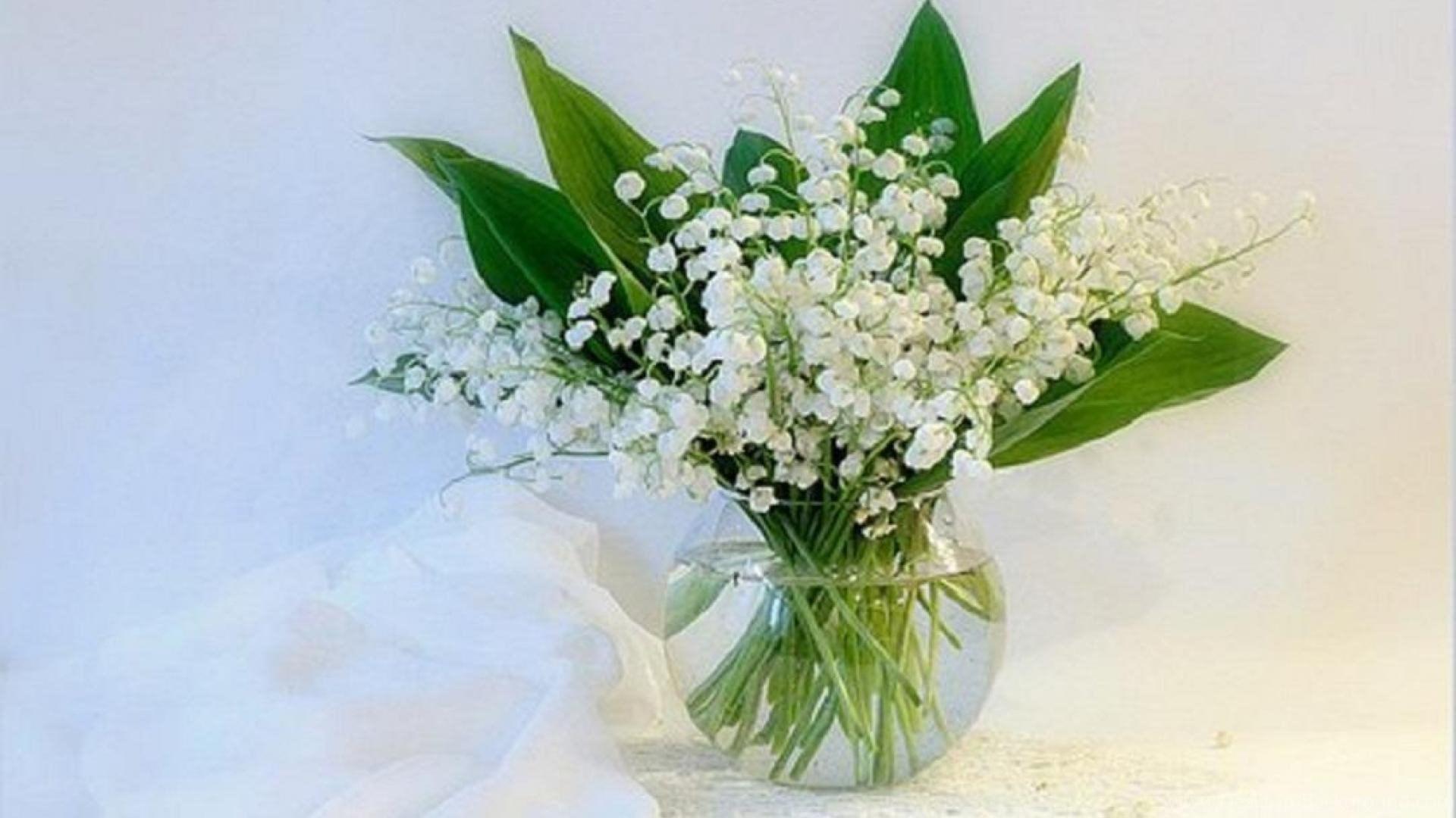 Цветов букеты, красивые букеты ландышей на 8 марта