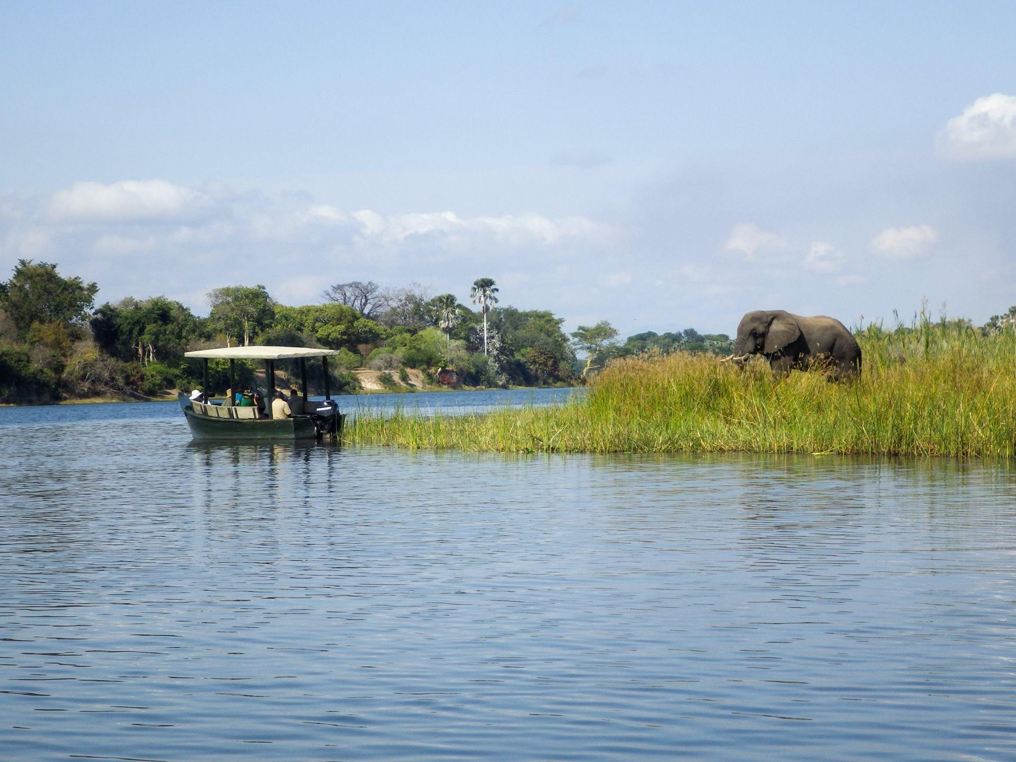 Central African Wilderness Safaris – Travel, Safaris and Holidays in