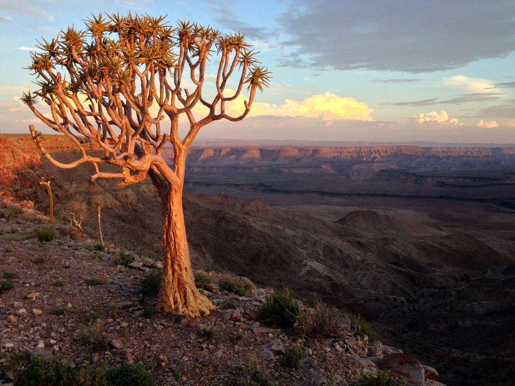Fish River Canyon - Namibia Travel