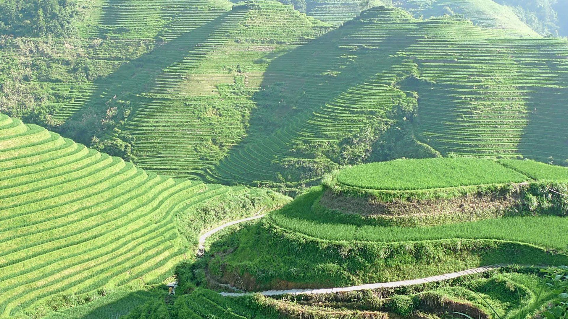 banaue rice terraces - luzon philippines | Ancient Constructs ...
