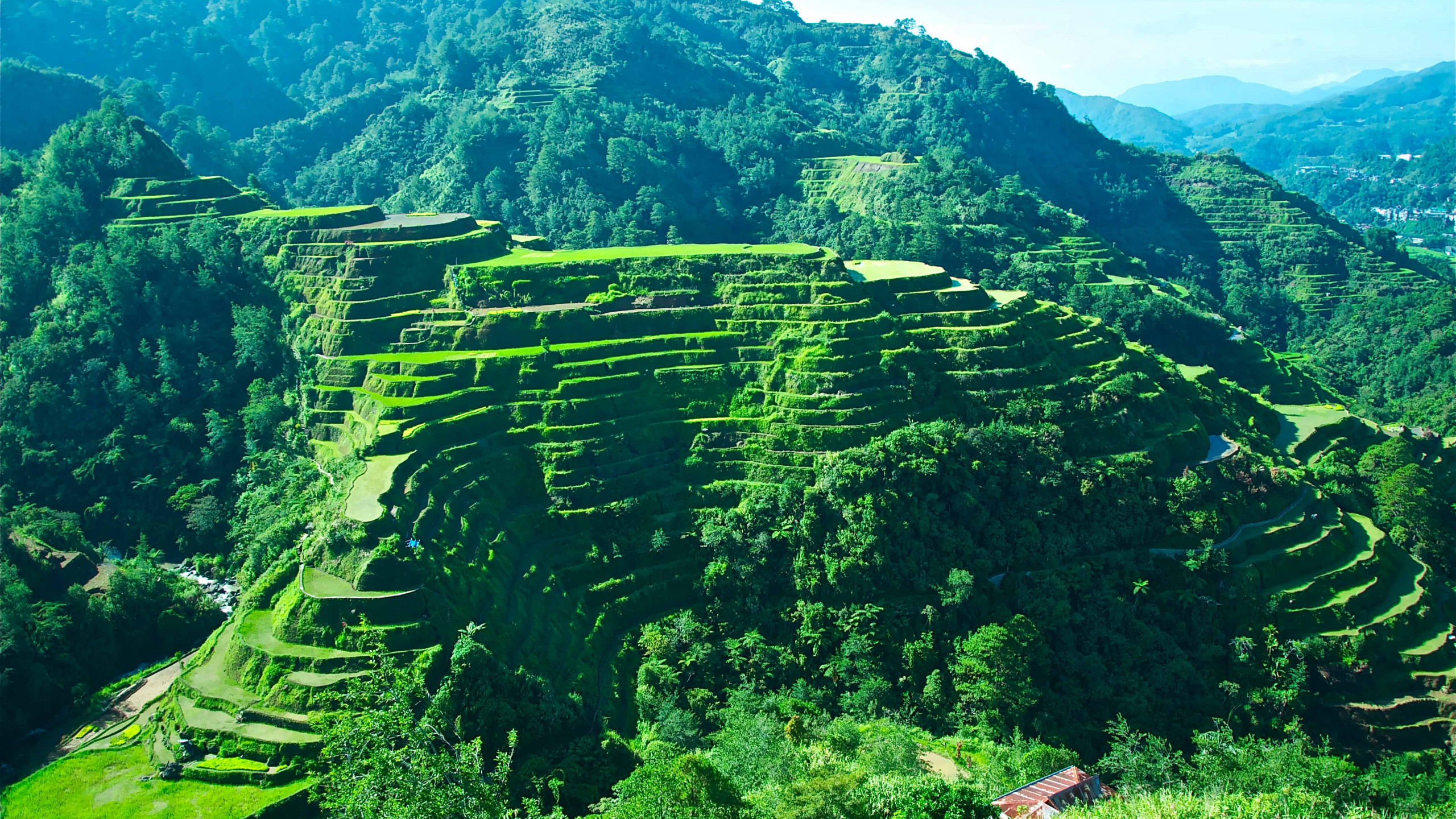 Wallpaper Cropper - Banaue Rice Terraces 2560 by 1440 (990)
