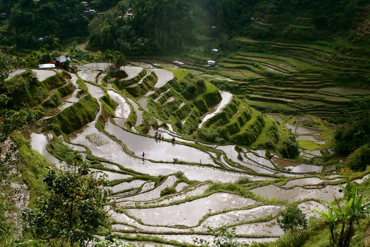 World Visits: Famous Place Banaue Rice Terraces 2000 Years Old Mountains