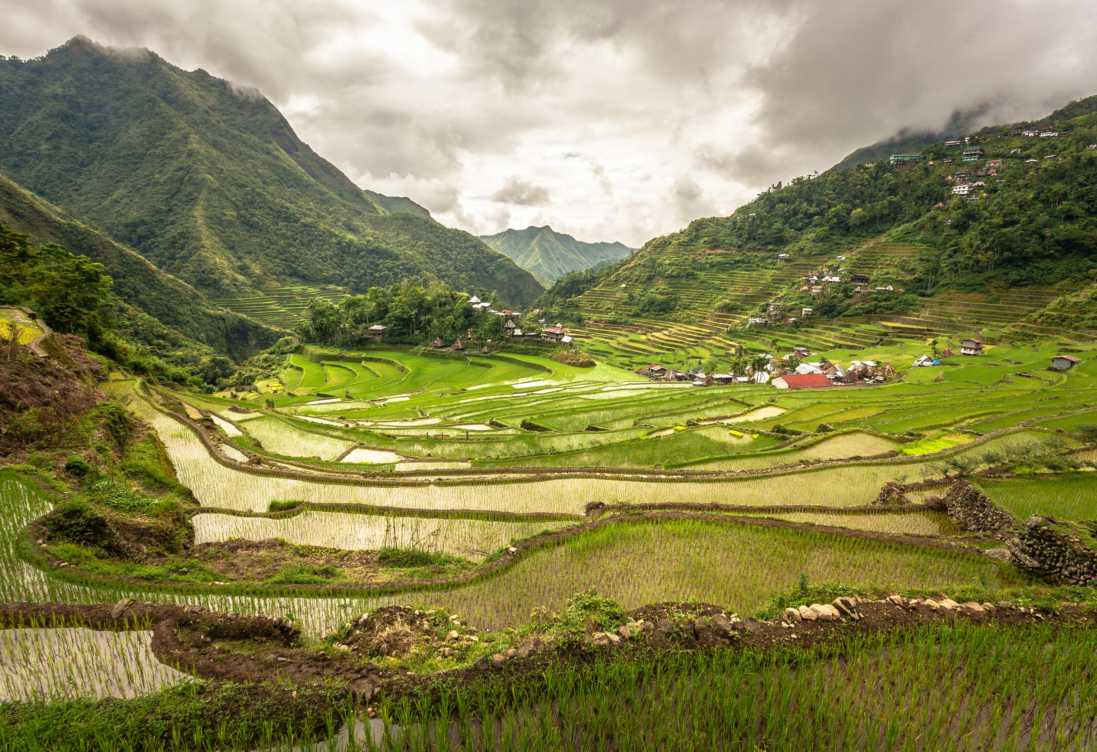 Philippines' Famed Banaue Rice Terraces by Adi Simionov [3782 × 2592 ...