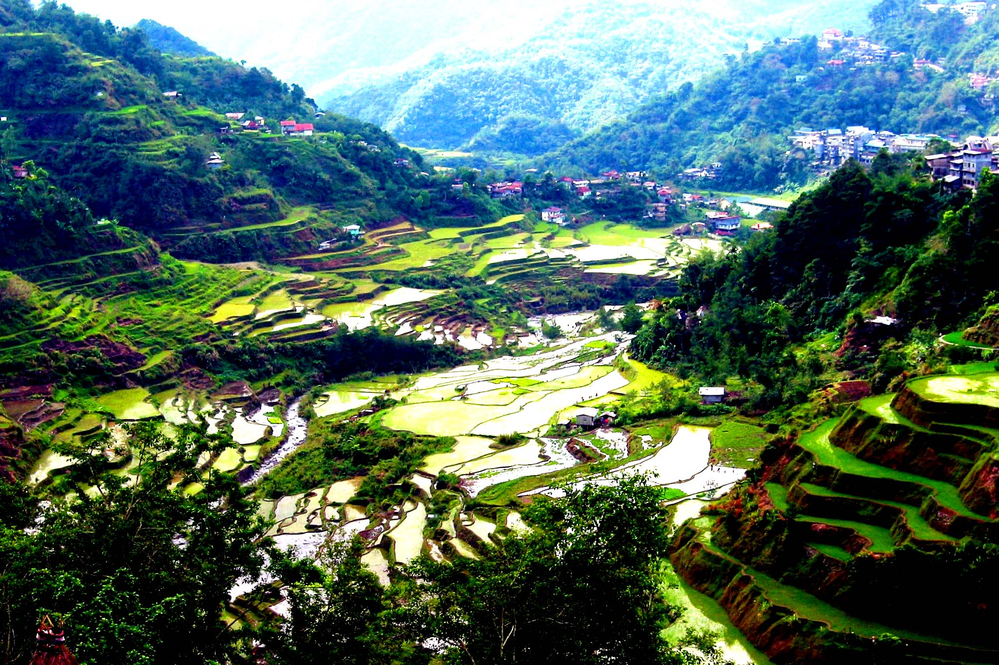 Rice Terraces Wallpapers High Quality | Download Free