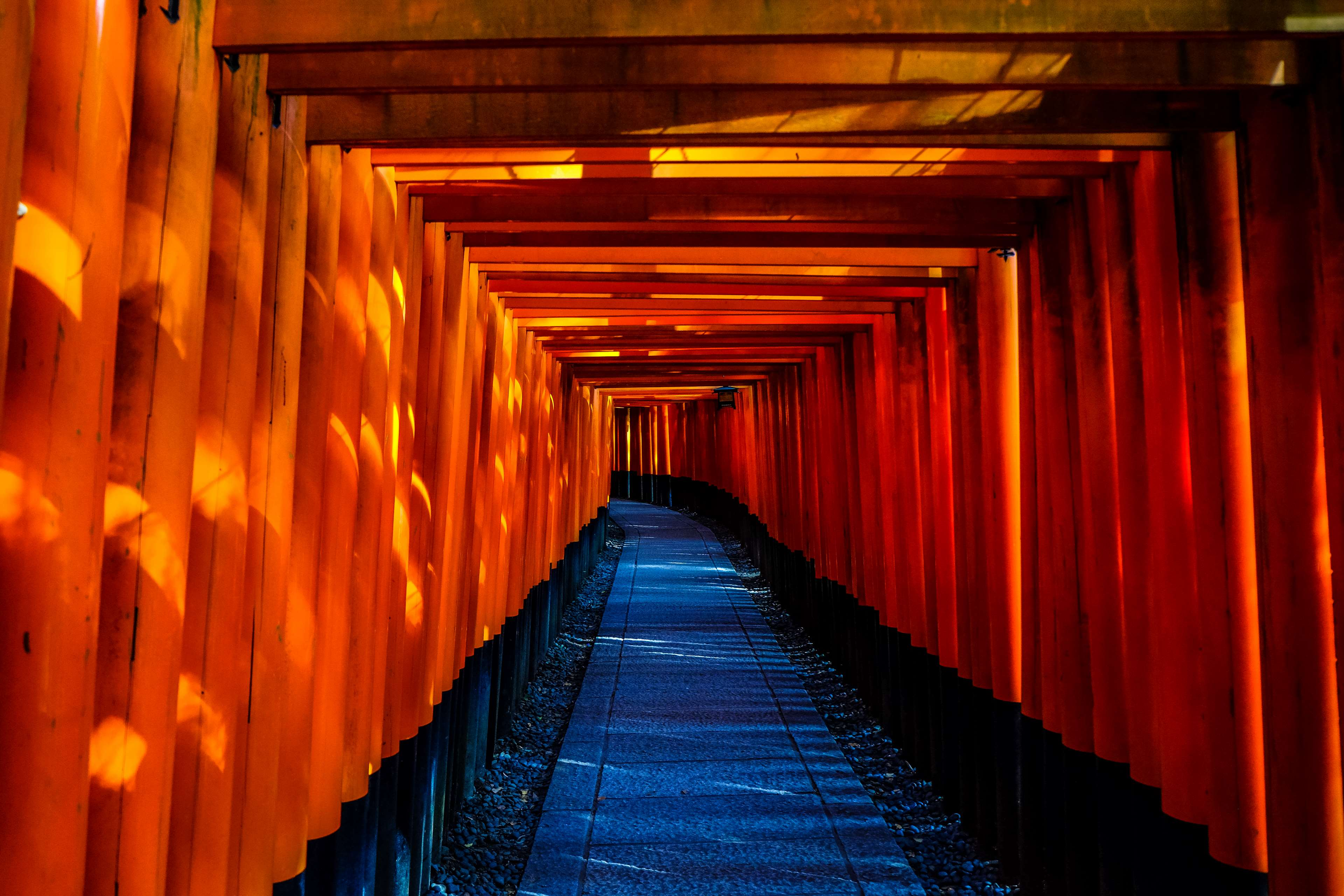 fushimi inari taisha, japan, temple, torii 4k wallpapers and backgrounds