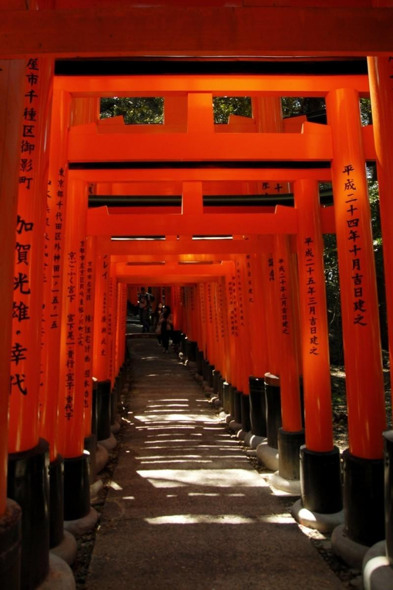 Fushimi Inari Taisha 1 Backgrounds Image for Free Download