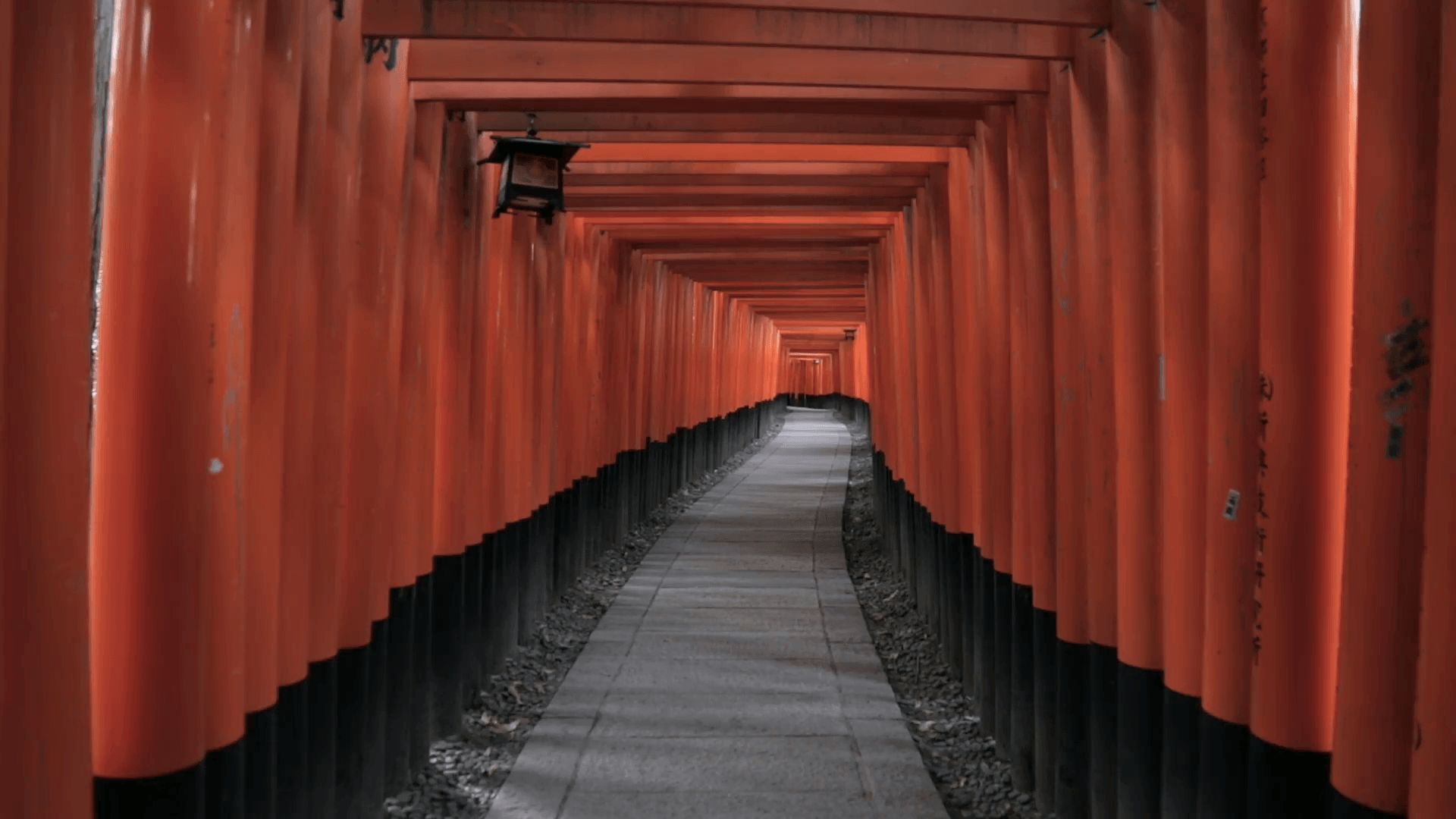 Red torii gates at Fushimi