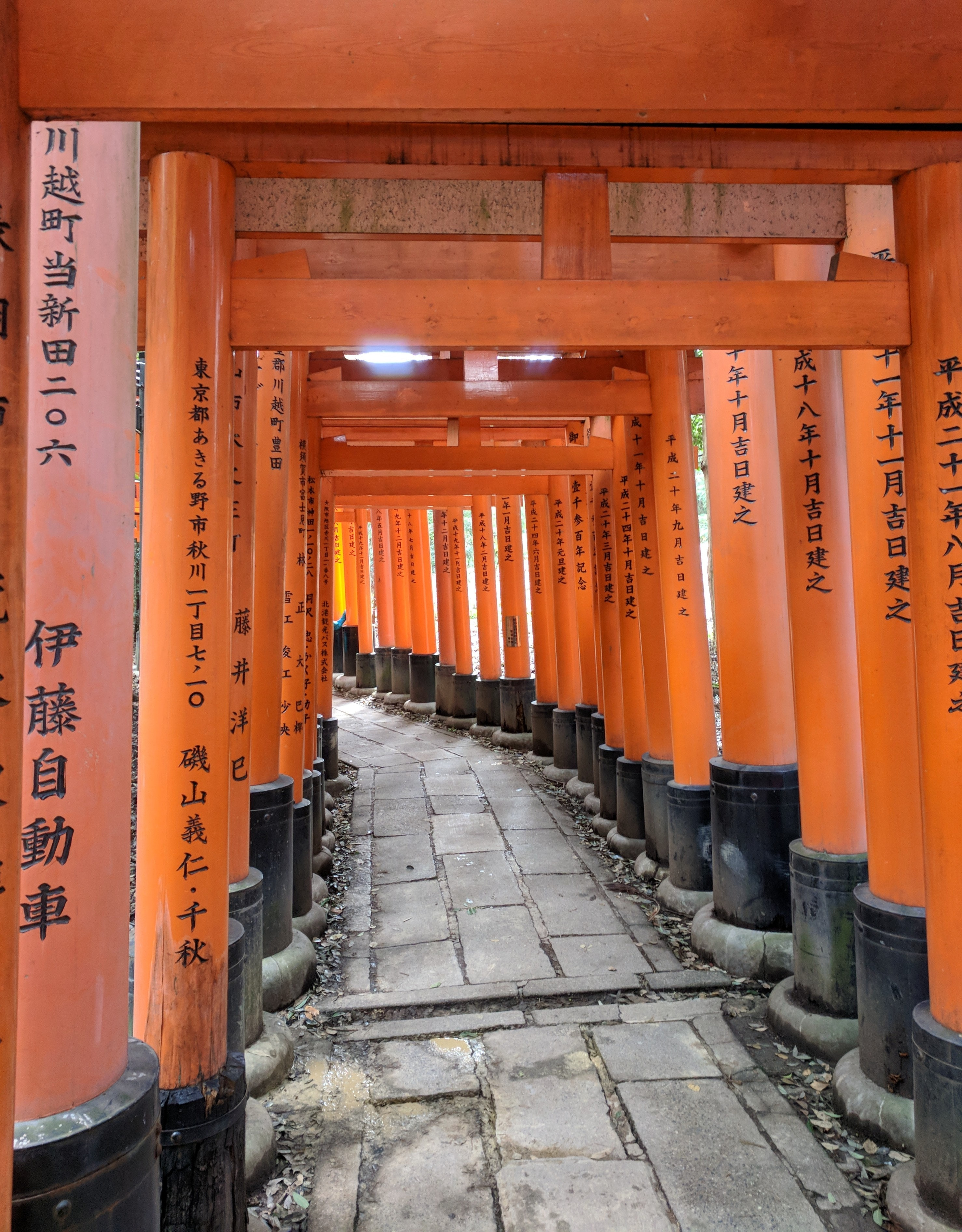 Free stock photo of Fushimi Inari
