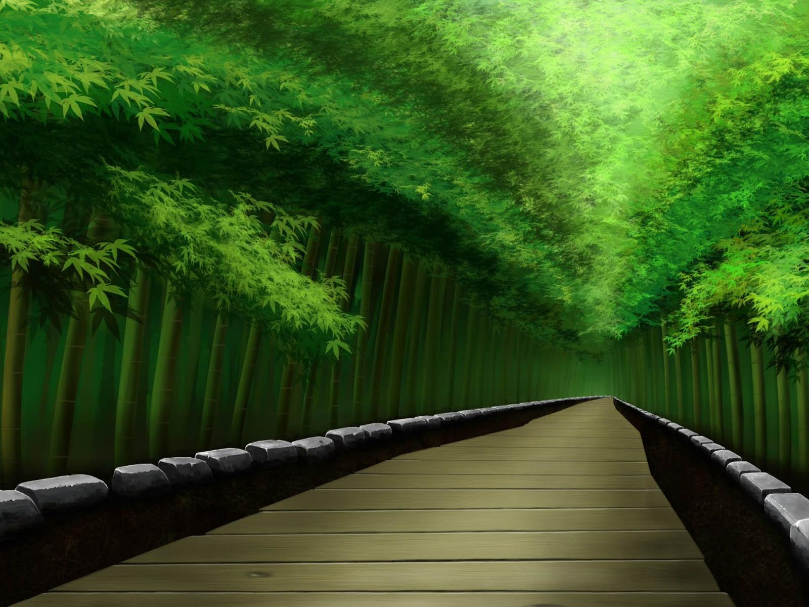 Bamboo Forest Japan Wallpapers