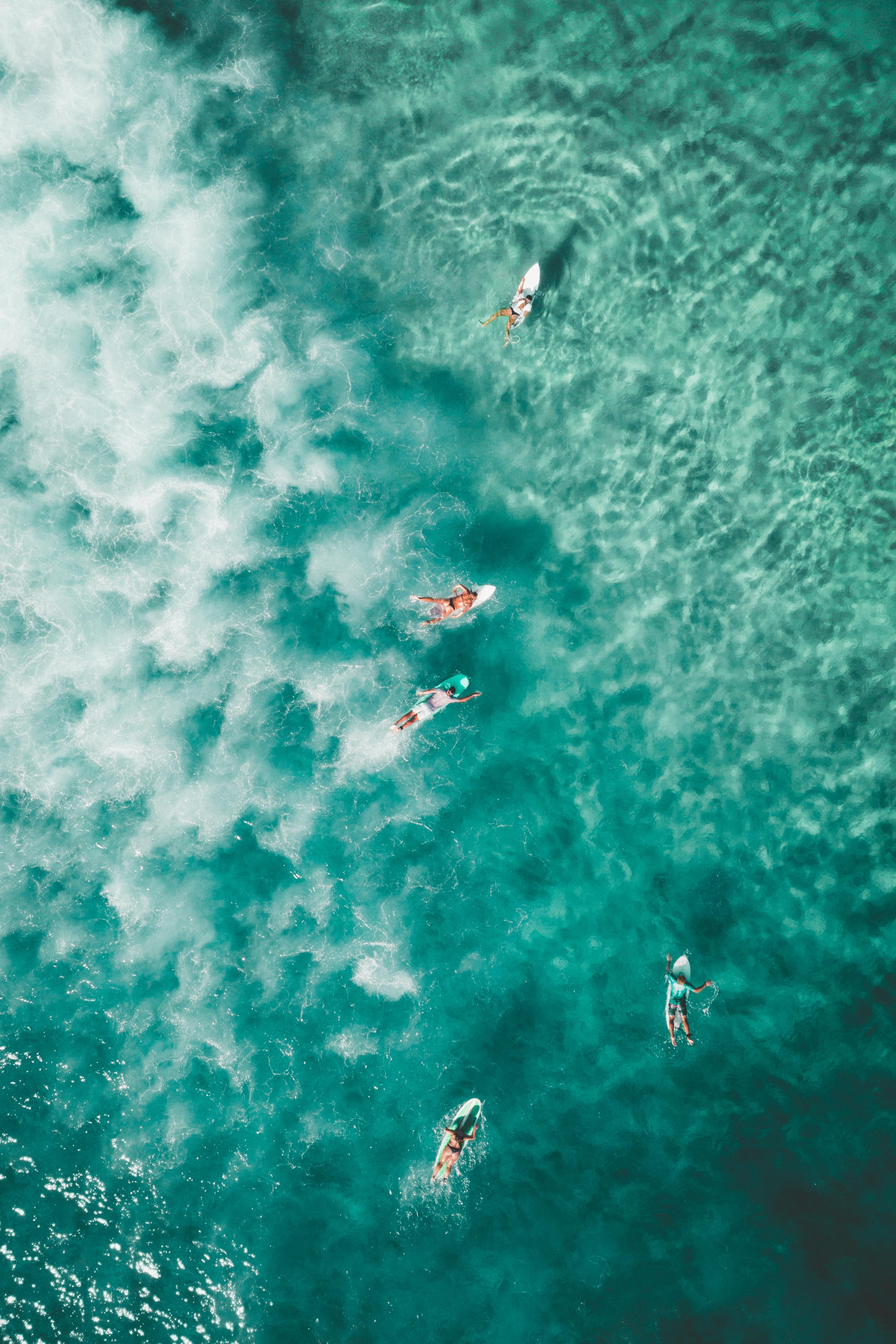 Download Bondi Beach Surfers Android Wallpaper | Yes Android