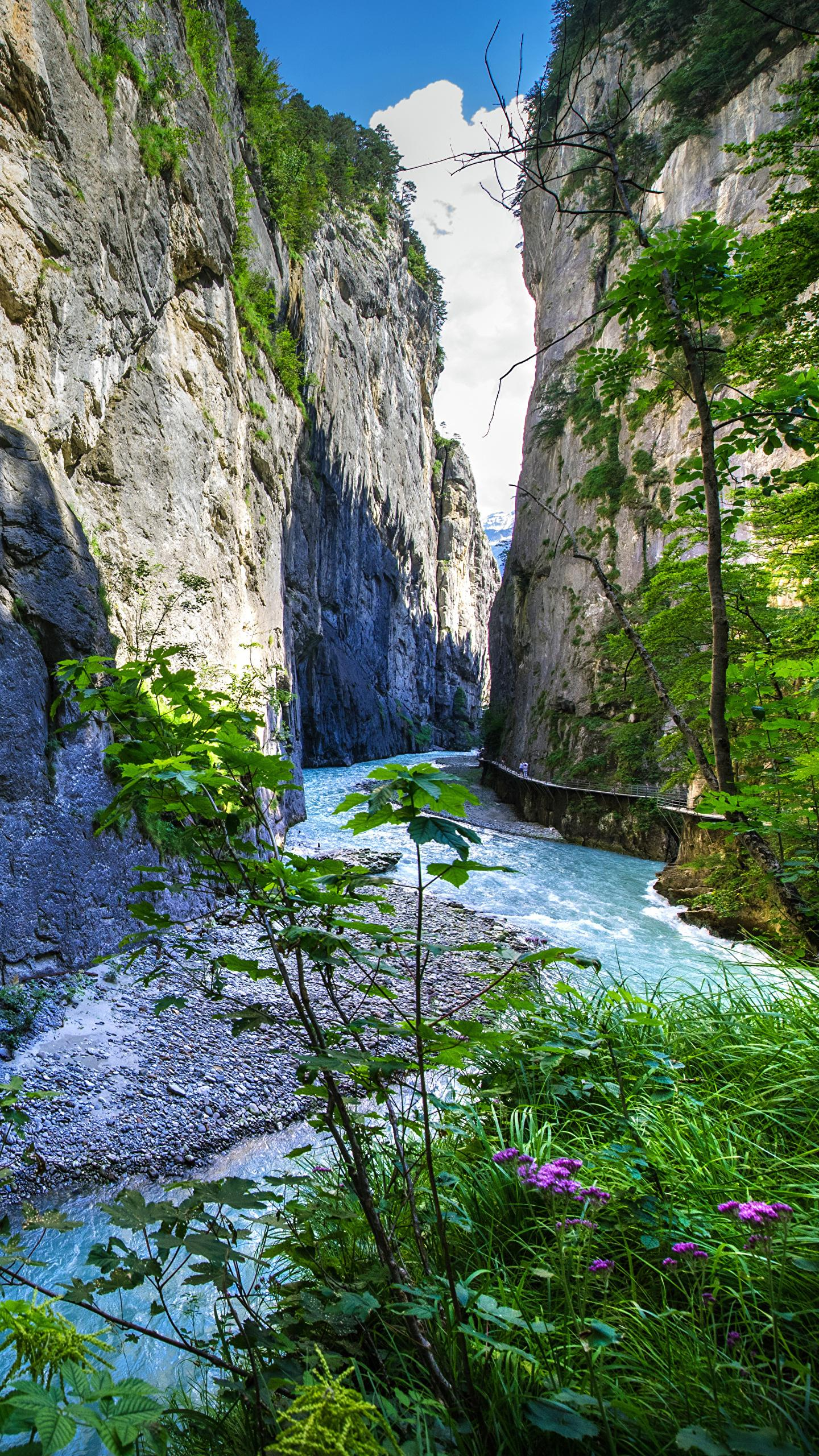 Wallpapers Bern Switzerland Aareschlucht Rock Nature 1440x2560