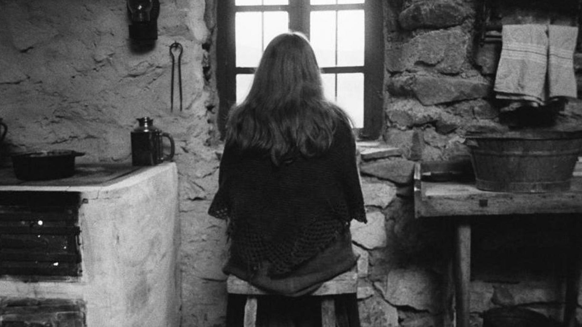Indoors kitchen grayscale windows the turin horse wallpapers