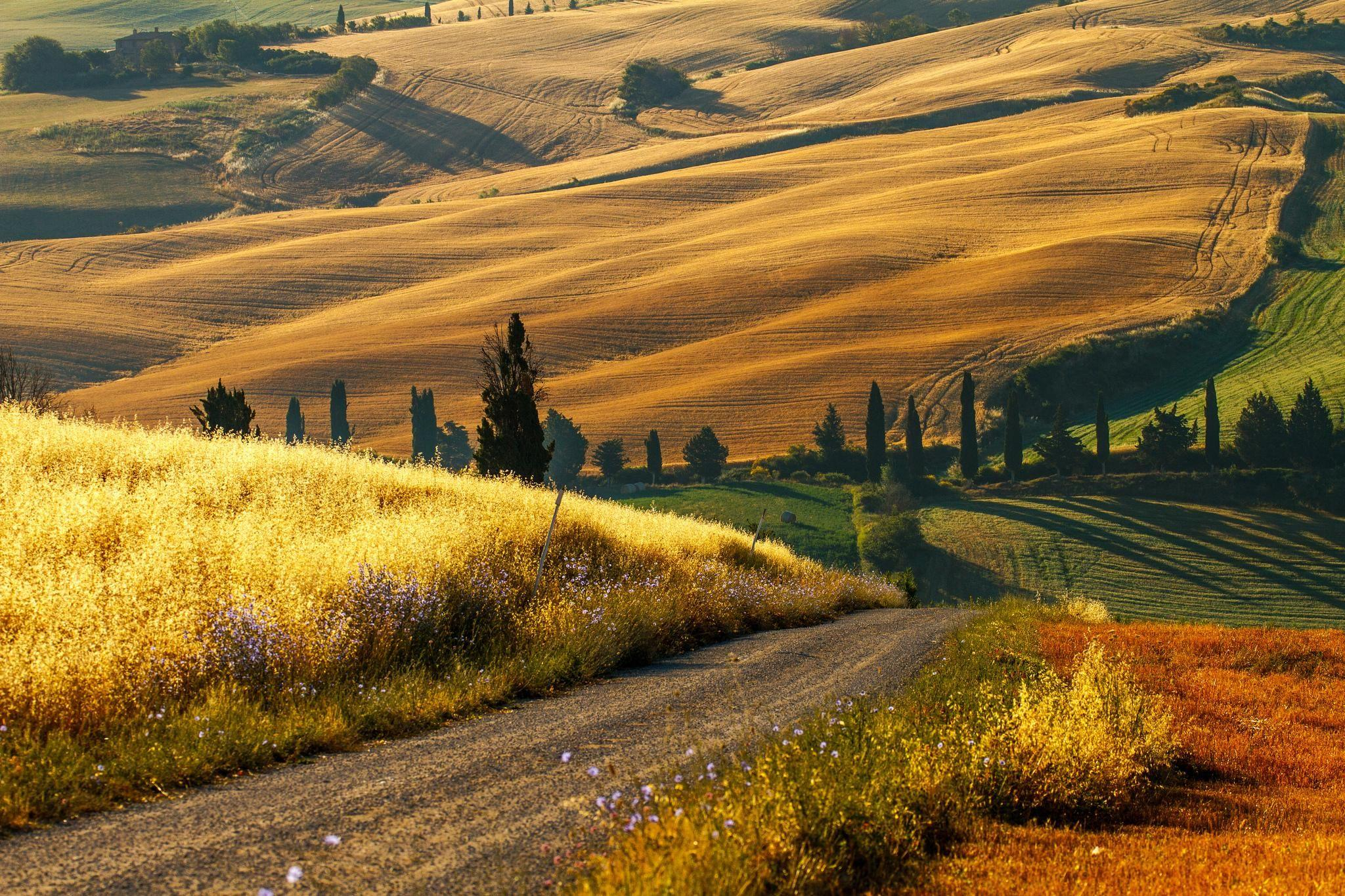 tuscany countryside | | Under the Tuscan Sun | Italy landscape ...