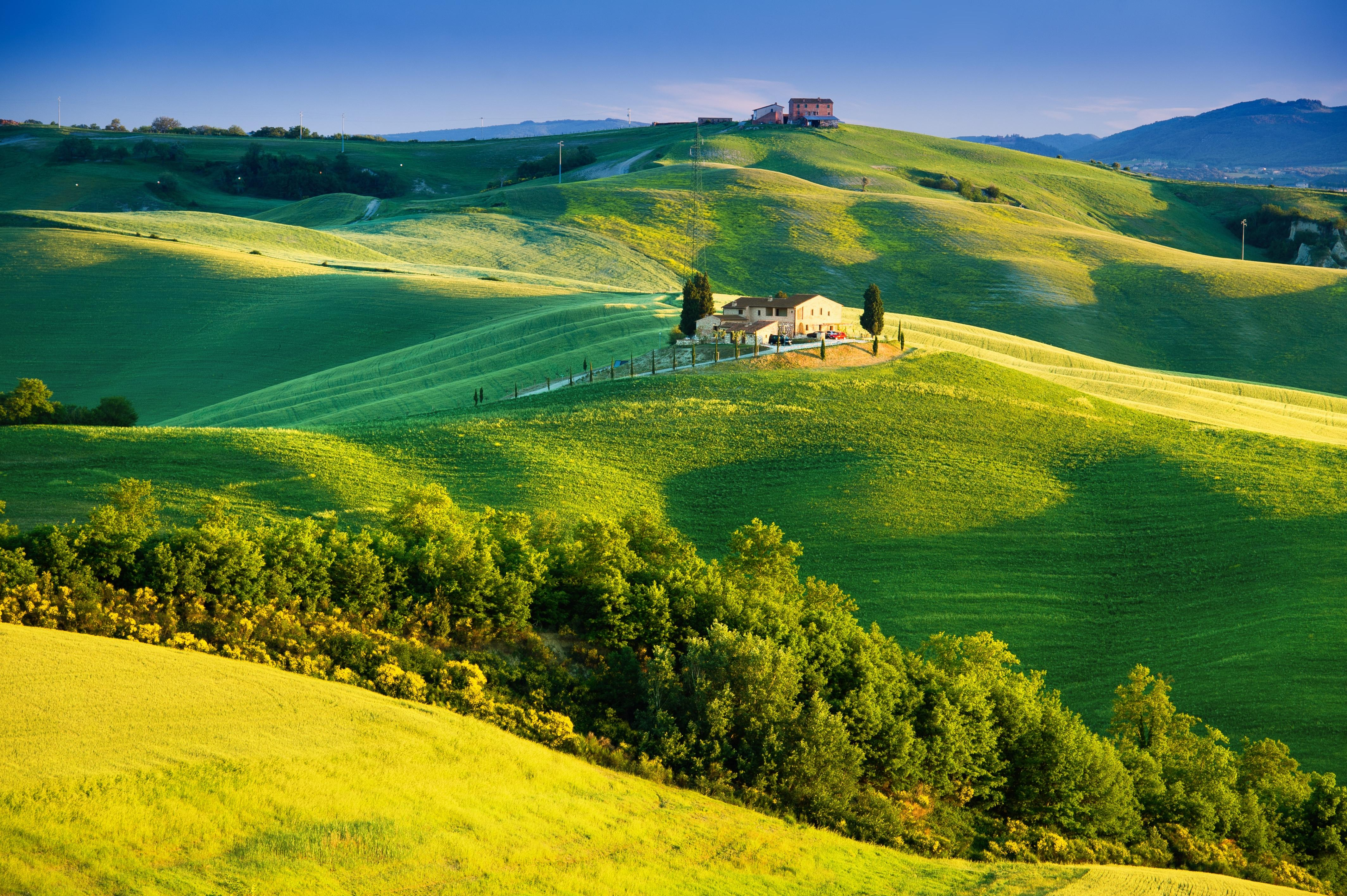Wallpaper sunlight, Tuscany, countryside, Italy, nature, trees ...